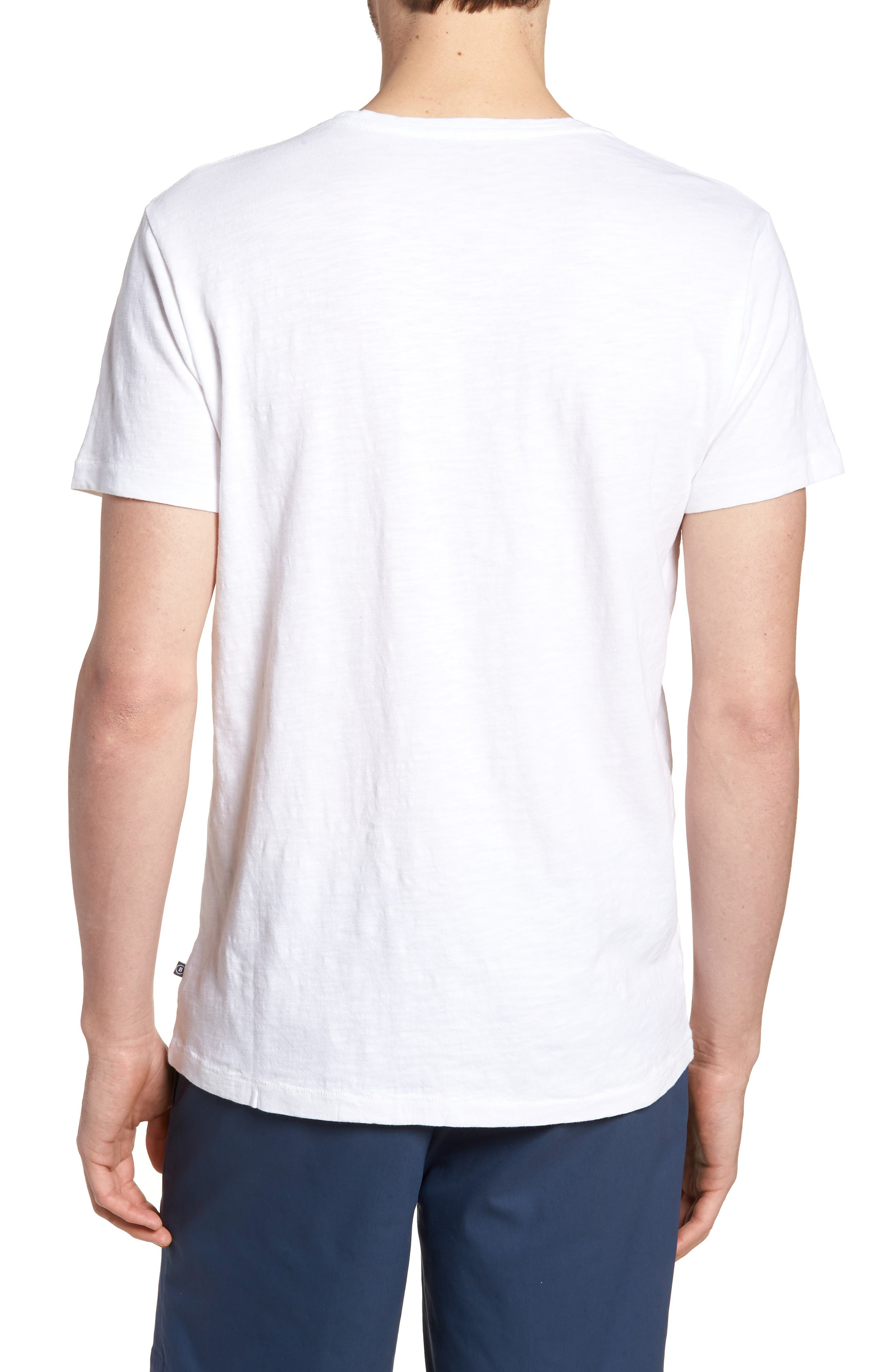 Embroidered T-Shirt,                             Alternate thumbnail 2, color,                             100
