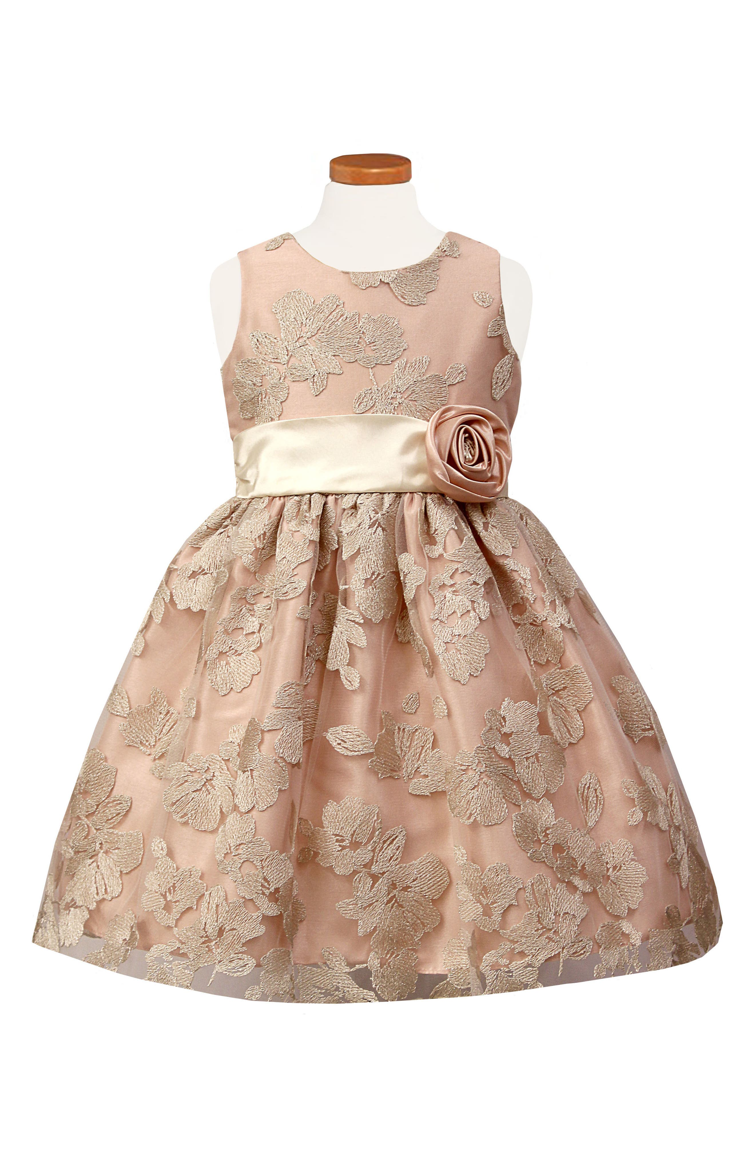 Embroidered Fit & Flare Dress,                         Main,                         color, BLUSH