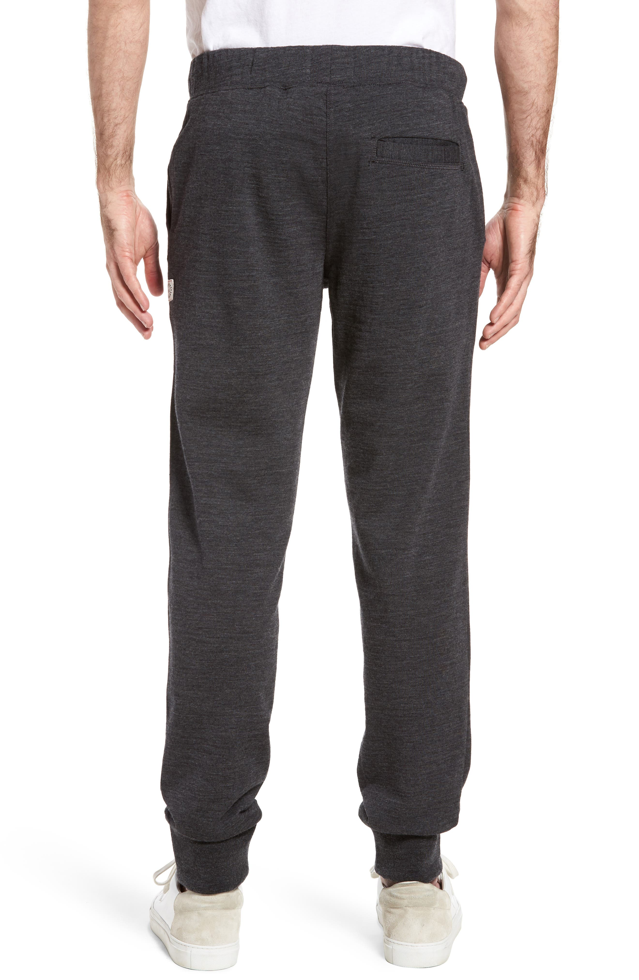 Merino Wool Fleece Jogger Pants,                             Alternate thumbnail 2, color,