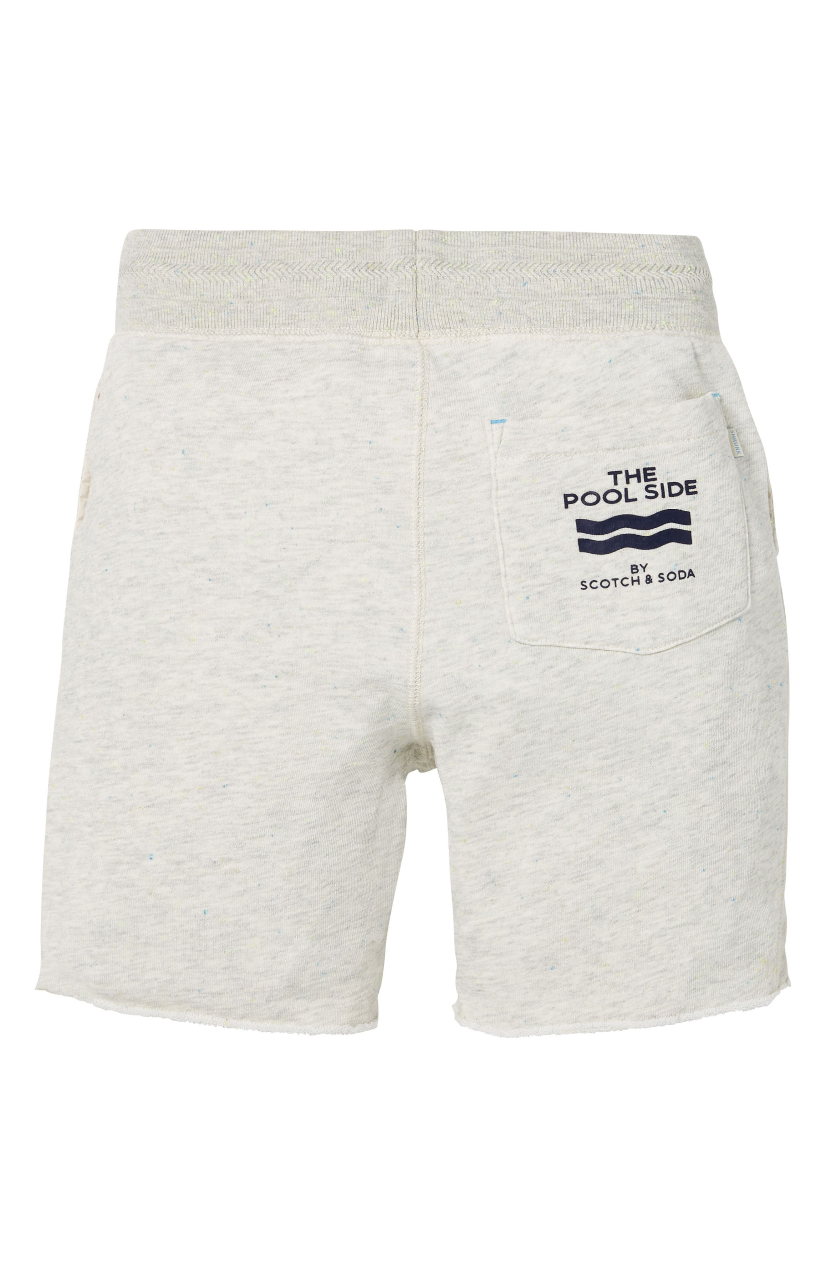 Pool Side Knit Shorts,                             Alternate thumbnail 2, color,                             900