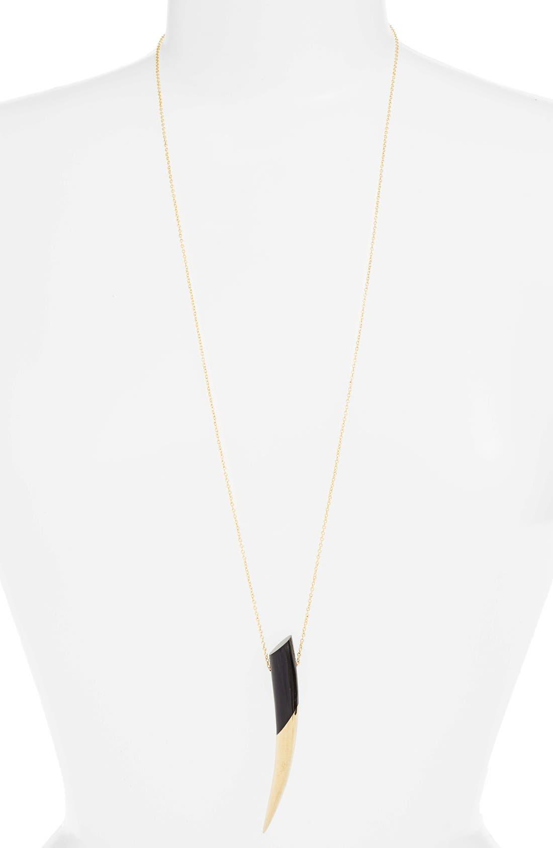 Dalili Horn Pendant Necklace,                             Main thumbnail 1, color,                             005