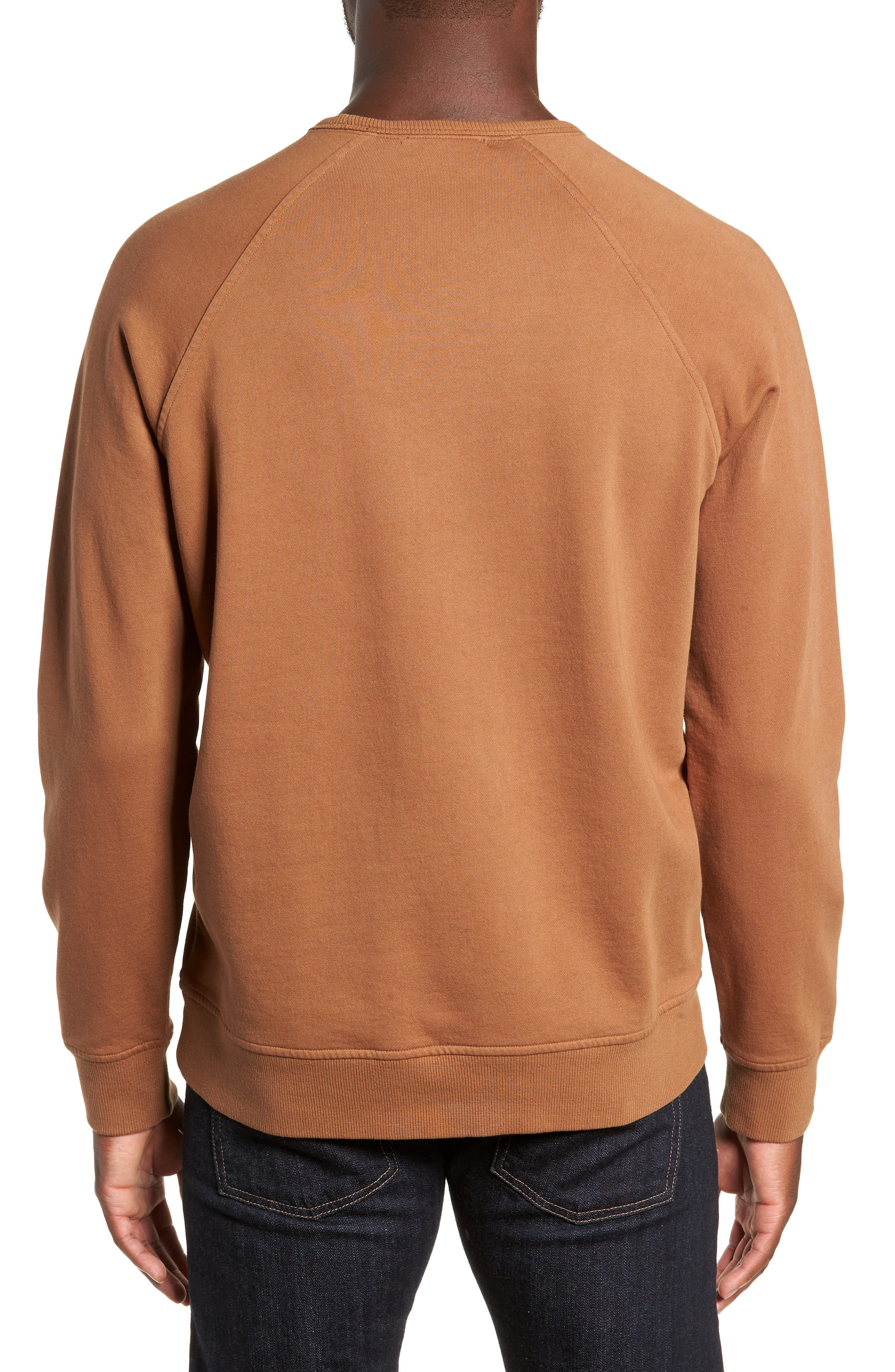 Schrank Regular Fit Cotton Sweatshirt,                             Alternate thumbnail 2, color,                             200
