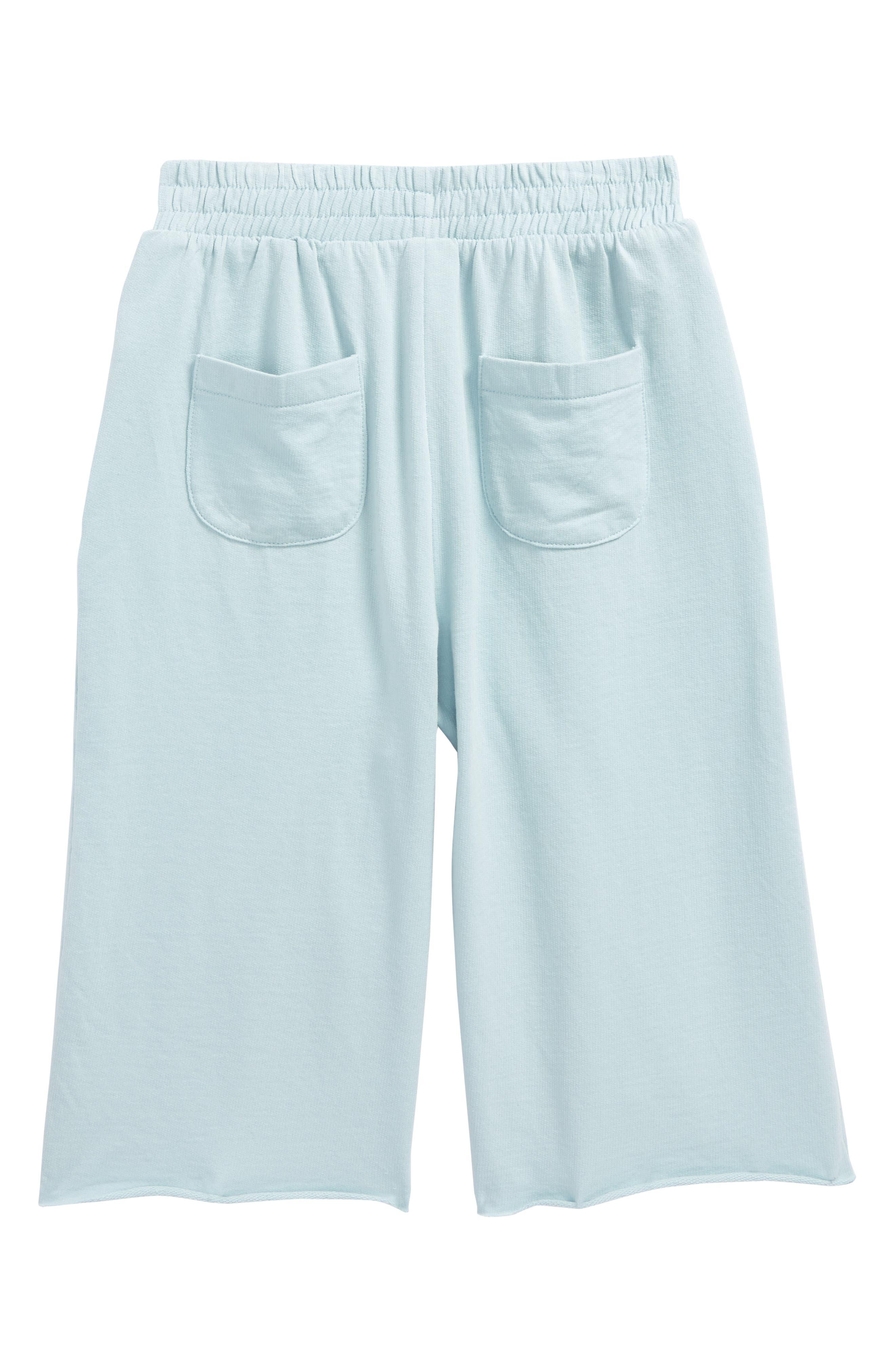 Wide Leg Sweatpants,                             Alternate thumbnail 2, color,                             450