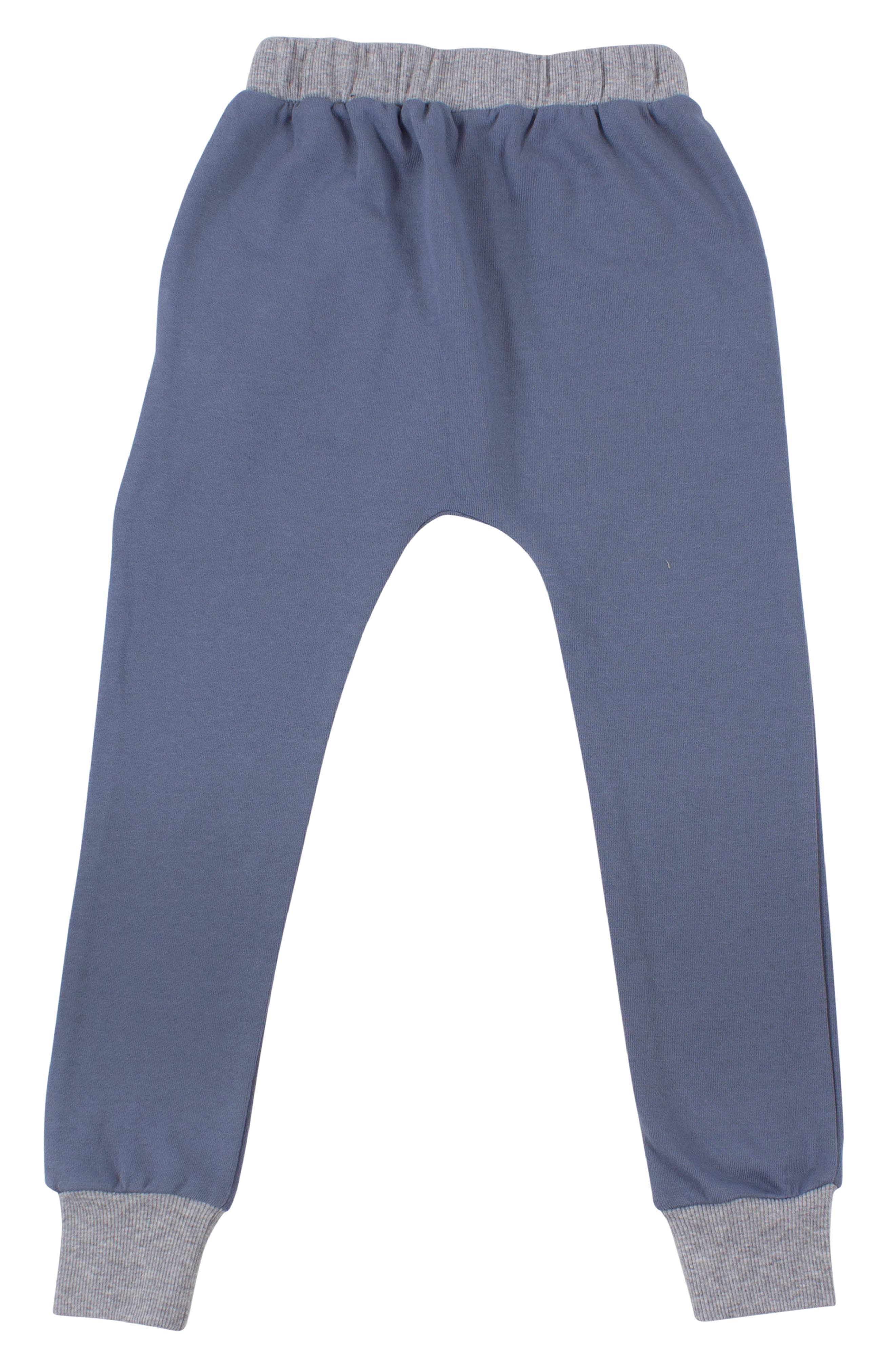 Zip Sweatpants,                             Alternate thumbnail 2, color,                             BLUE