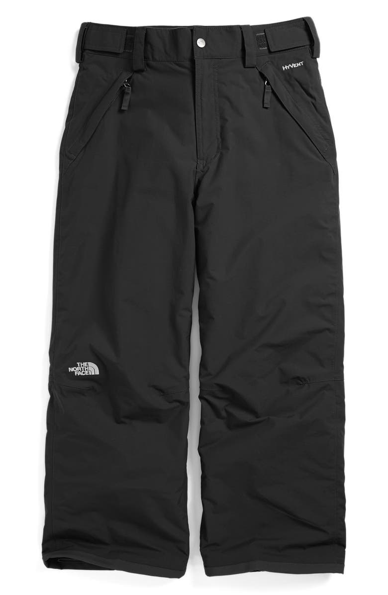 6e6de2b2a 'Freedom' Waterproof Heatseeker™ Insulated Snow Pants