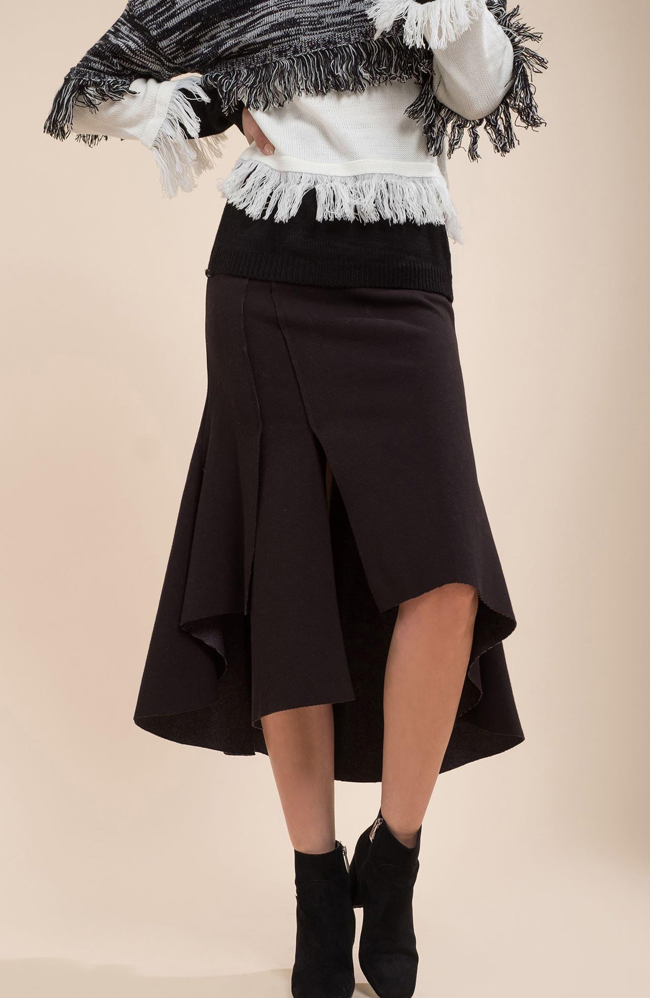 Ruffle High/Low Skirt,                             Alternate thumbnail 7, color,                             001