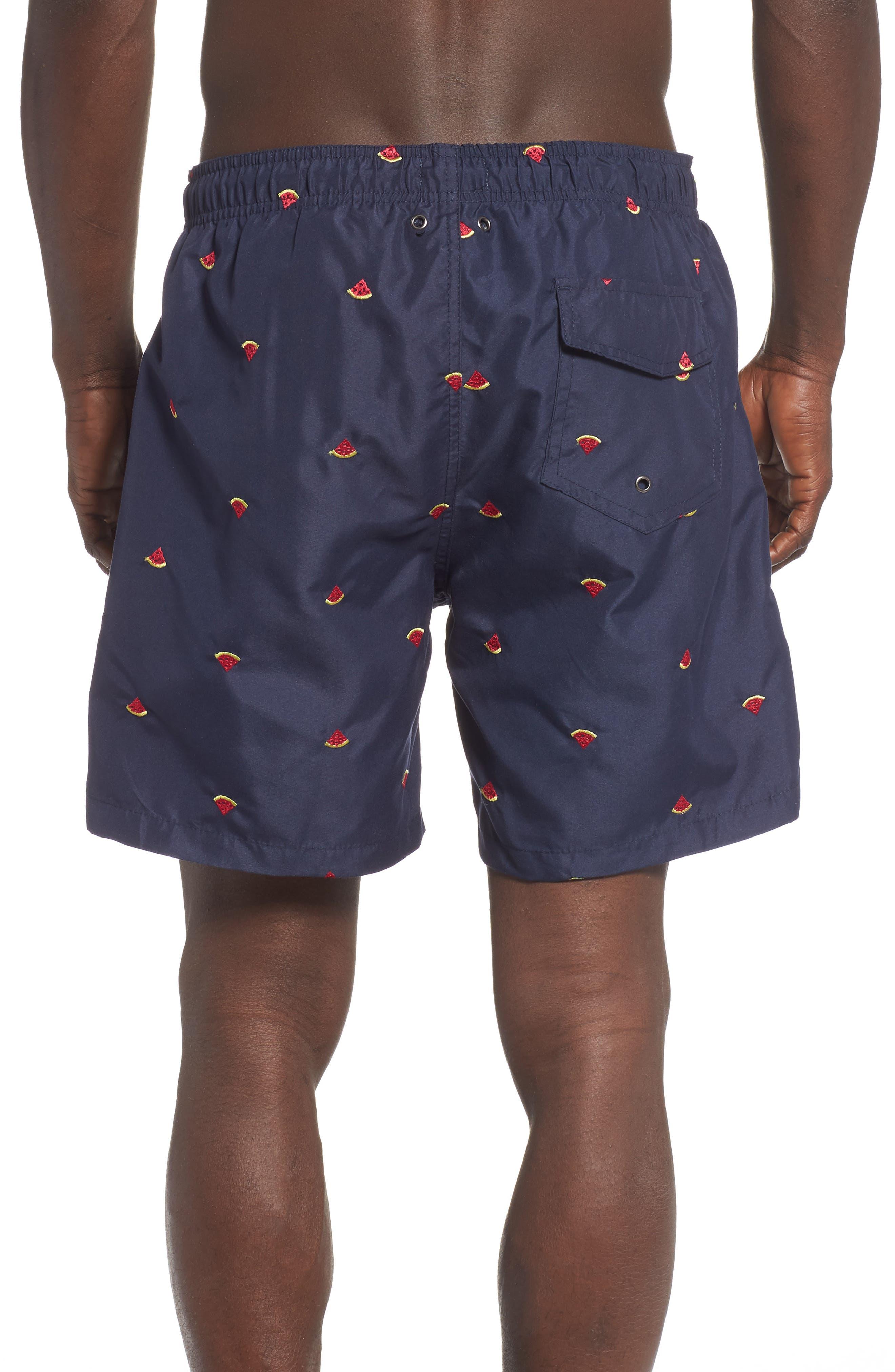 Premium Embroidered Sano Swim Trunks,                             Alternate thumbnail 2, color,                             WATERMELON DRAWING