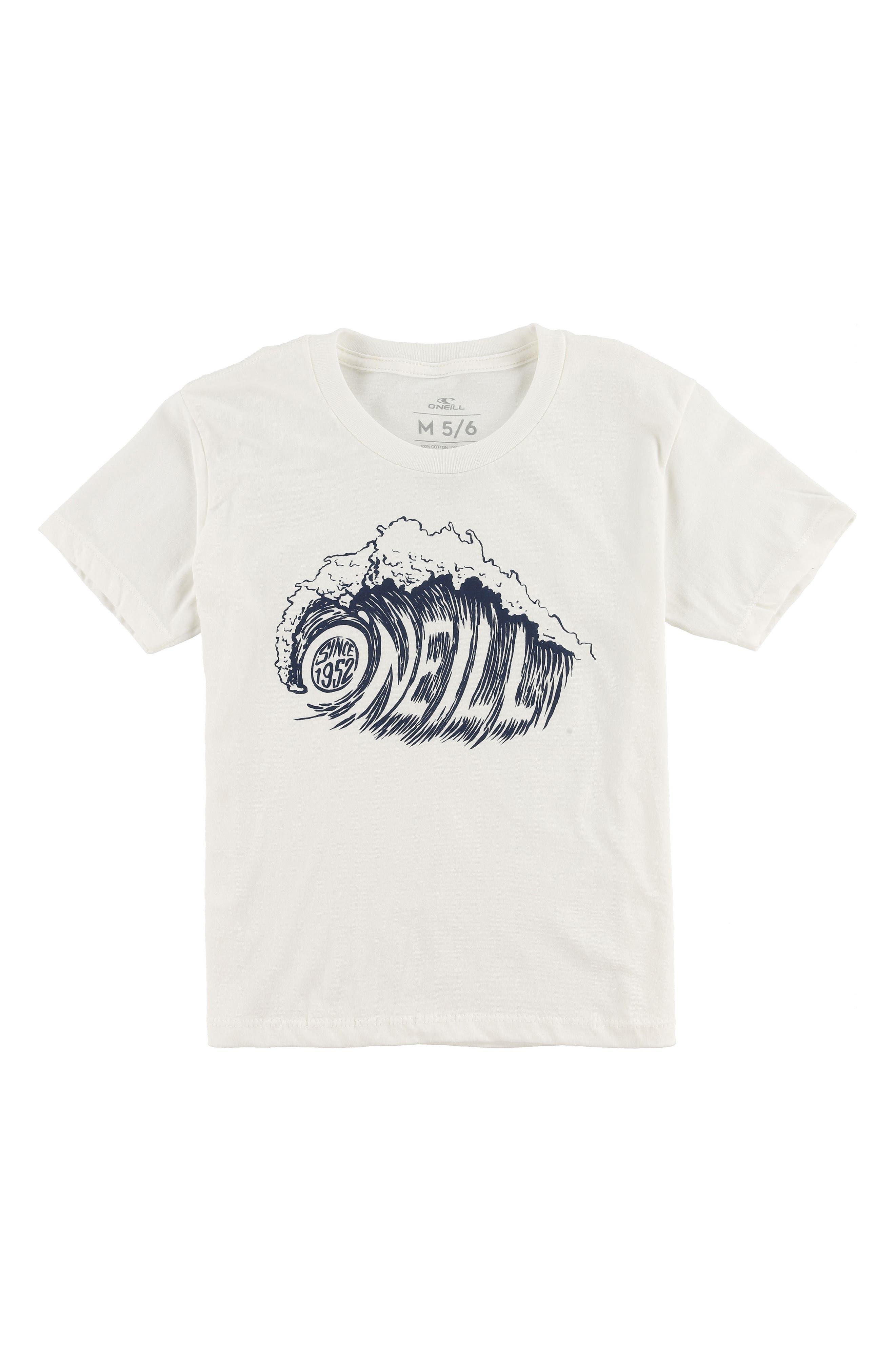 Sandspit Graphic T-Shirt,                         Main,                         color, 100