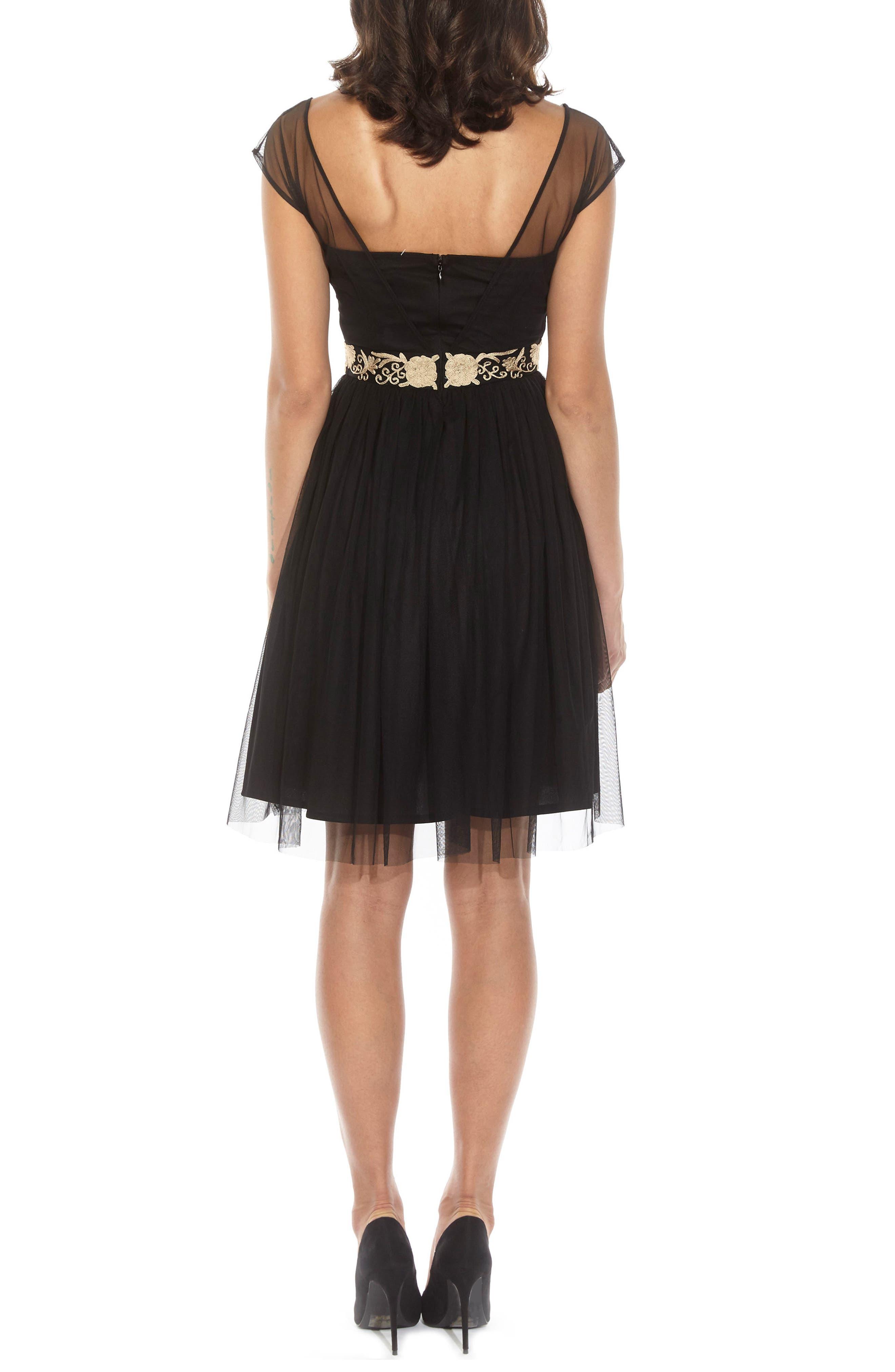 Embroidered Mesh Skater Dress,                             Alternate thumbnail 2, color,                             BLACK