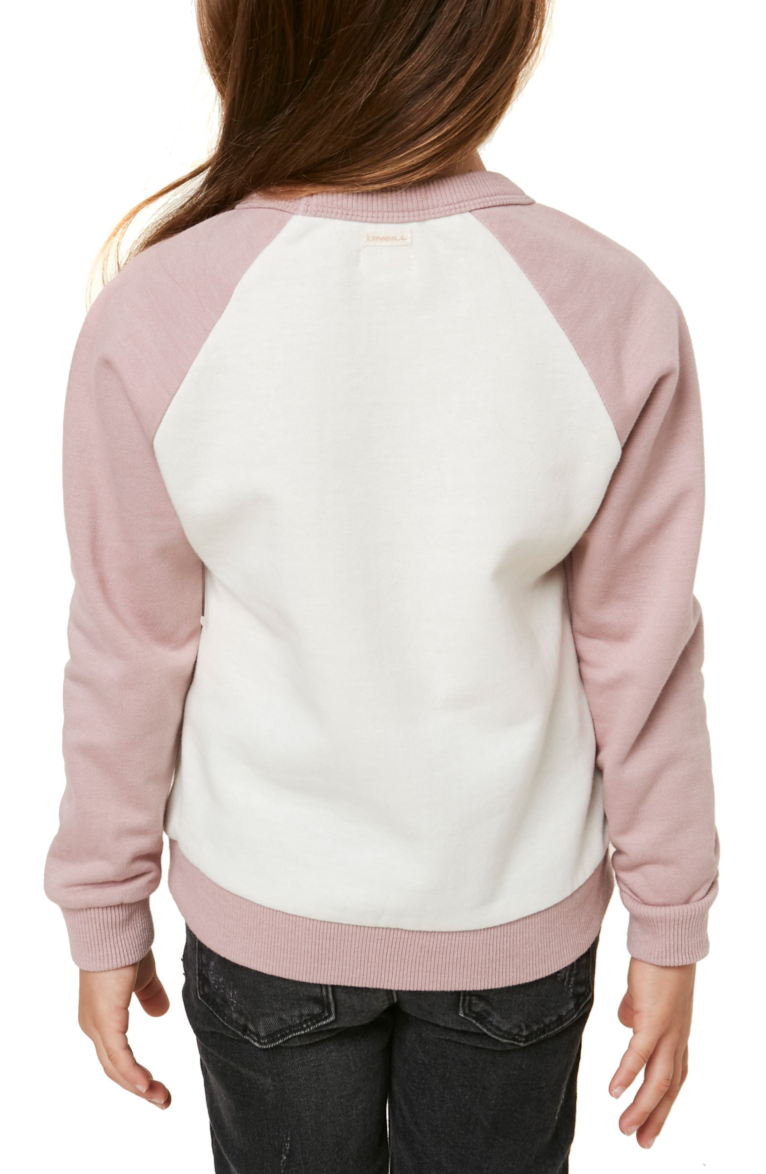 Sol Embroidered Sweatshirt,                             Alternate thumbnail 4, color,                             506