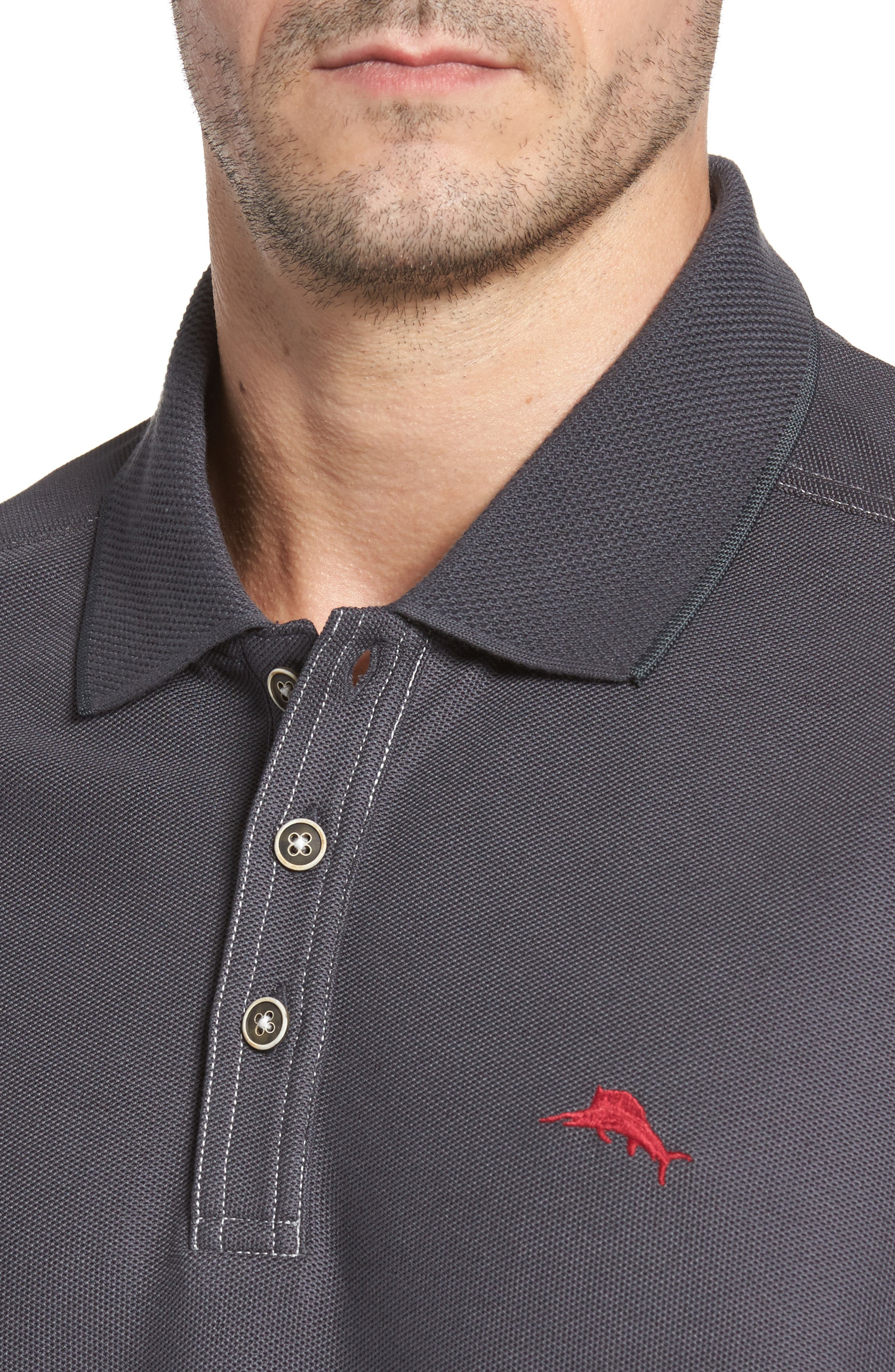Emfielder Long Sleeve Polo,                             Alternate thumbnail 35, color,