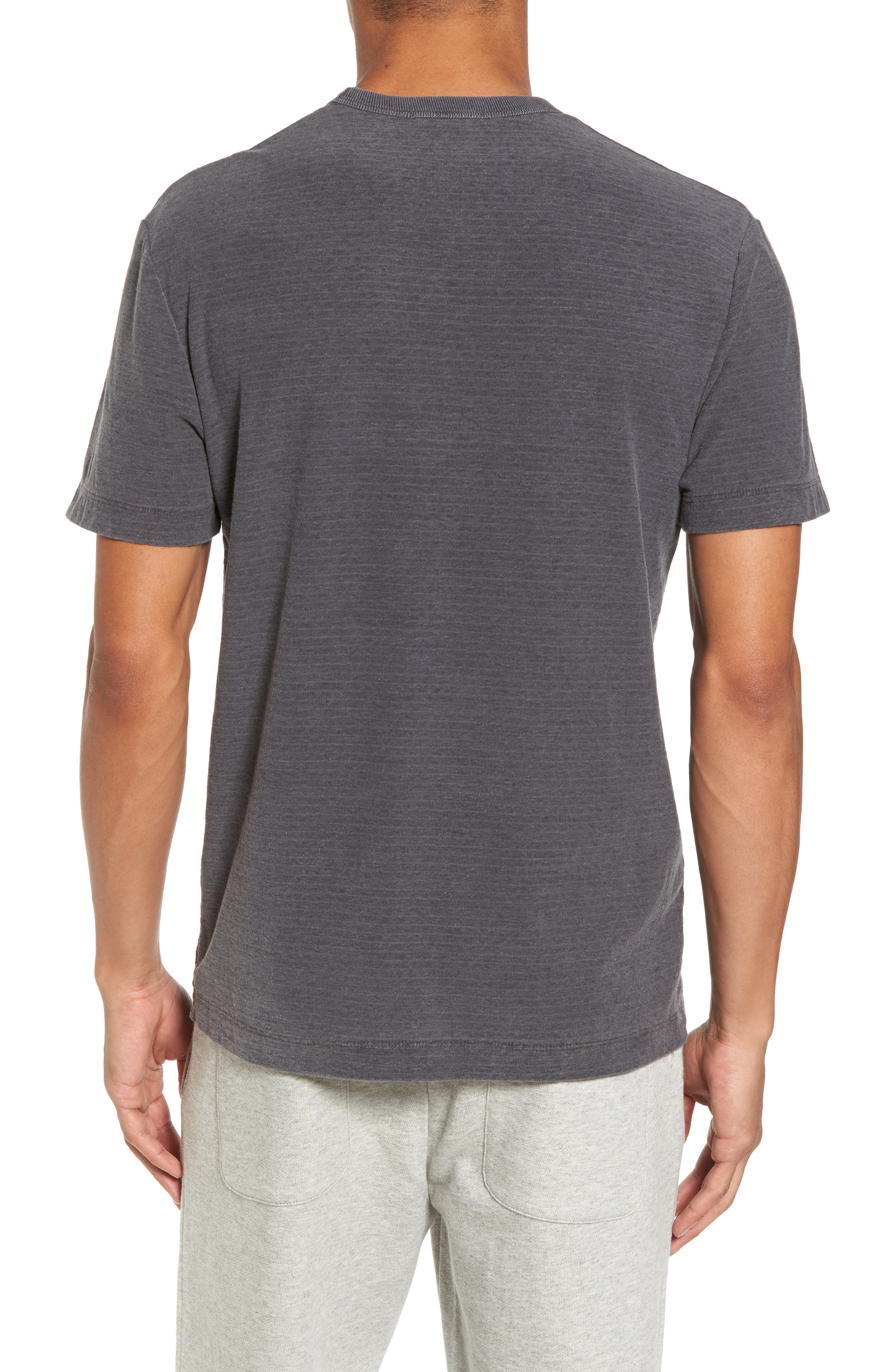 Microstripe Ringer T-Shirt,                             Alternate thumbnail 2, color,                             020