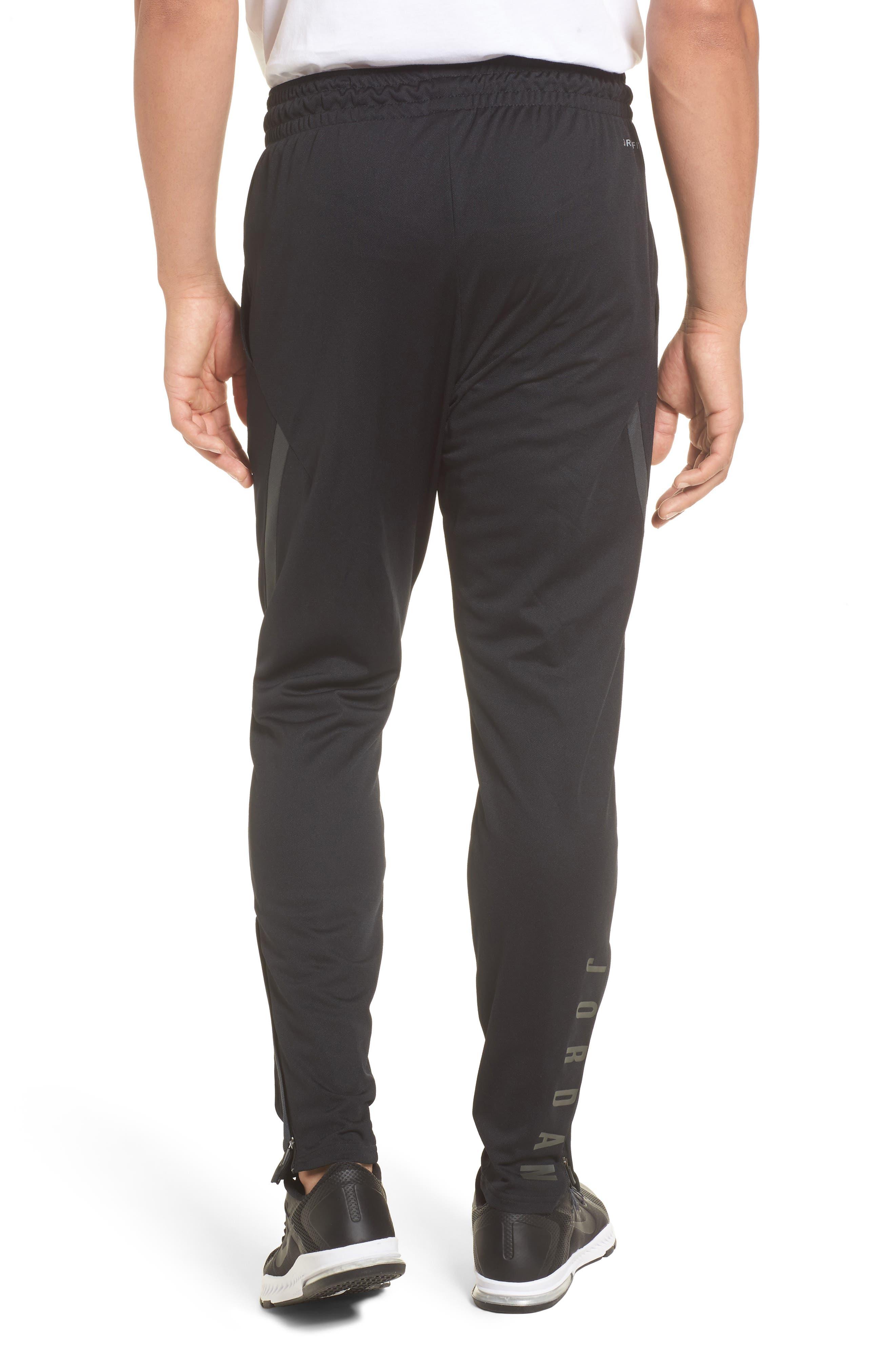 Dry 23 Alpha Pants,                             Alternate thumbnail 2, color,                             010