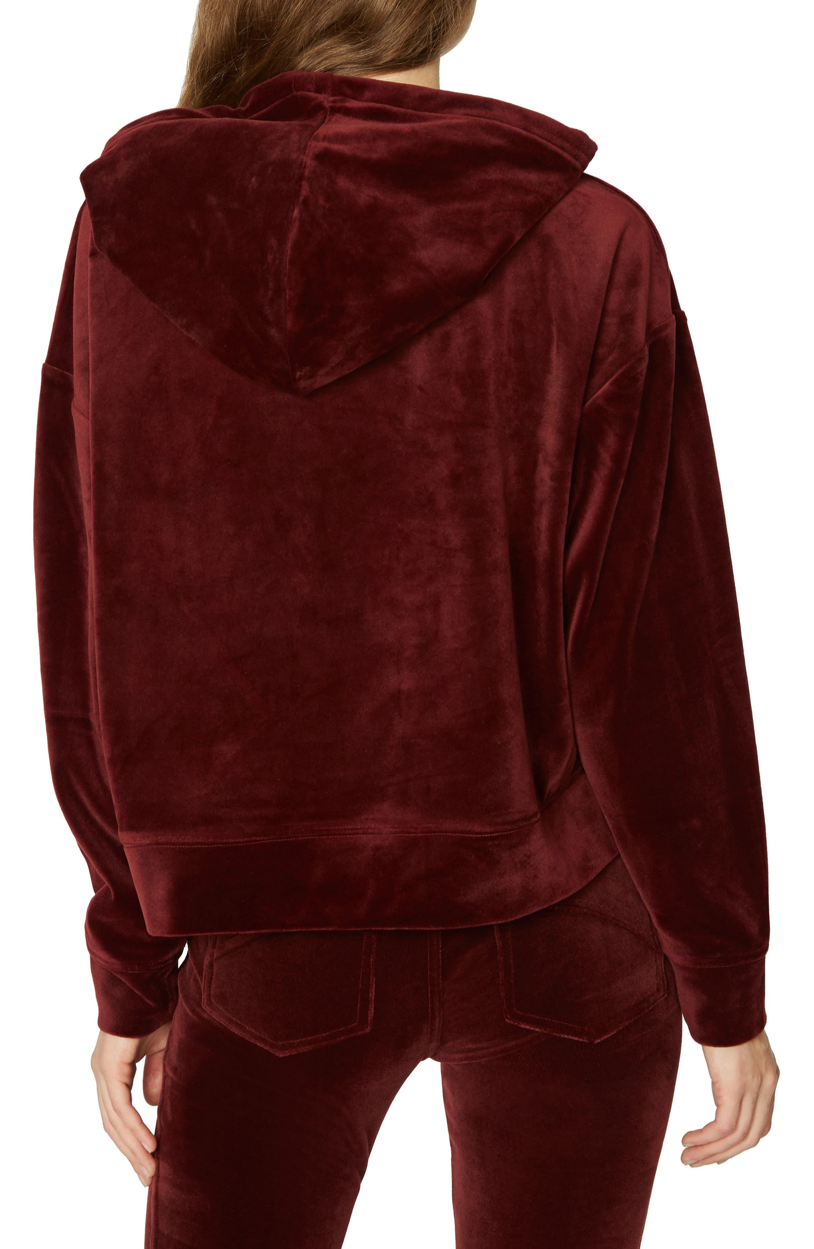 SANCTUARY,                             Melrose Brigade Velour Hoodie Sweater,                             Alternate thumbnail 2, color,                             602