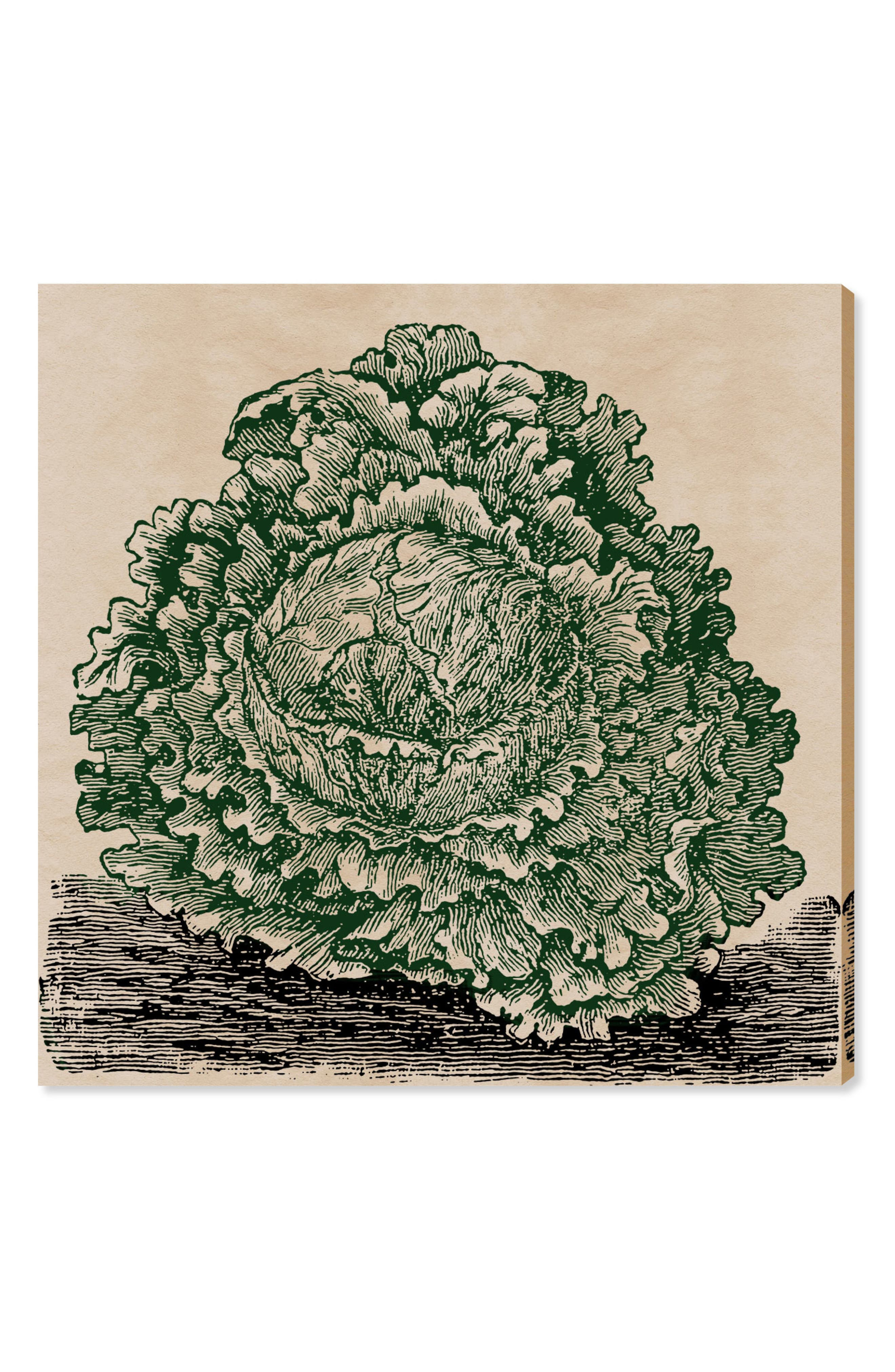 Lettuce Woodblock Canvas Wall Art,                             Main thumbnail 1, color,                             300