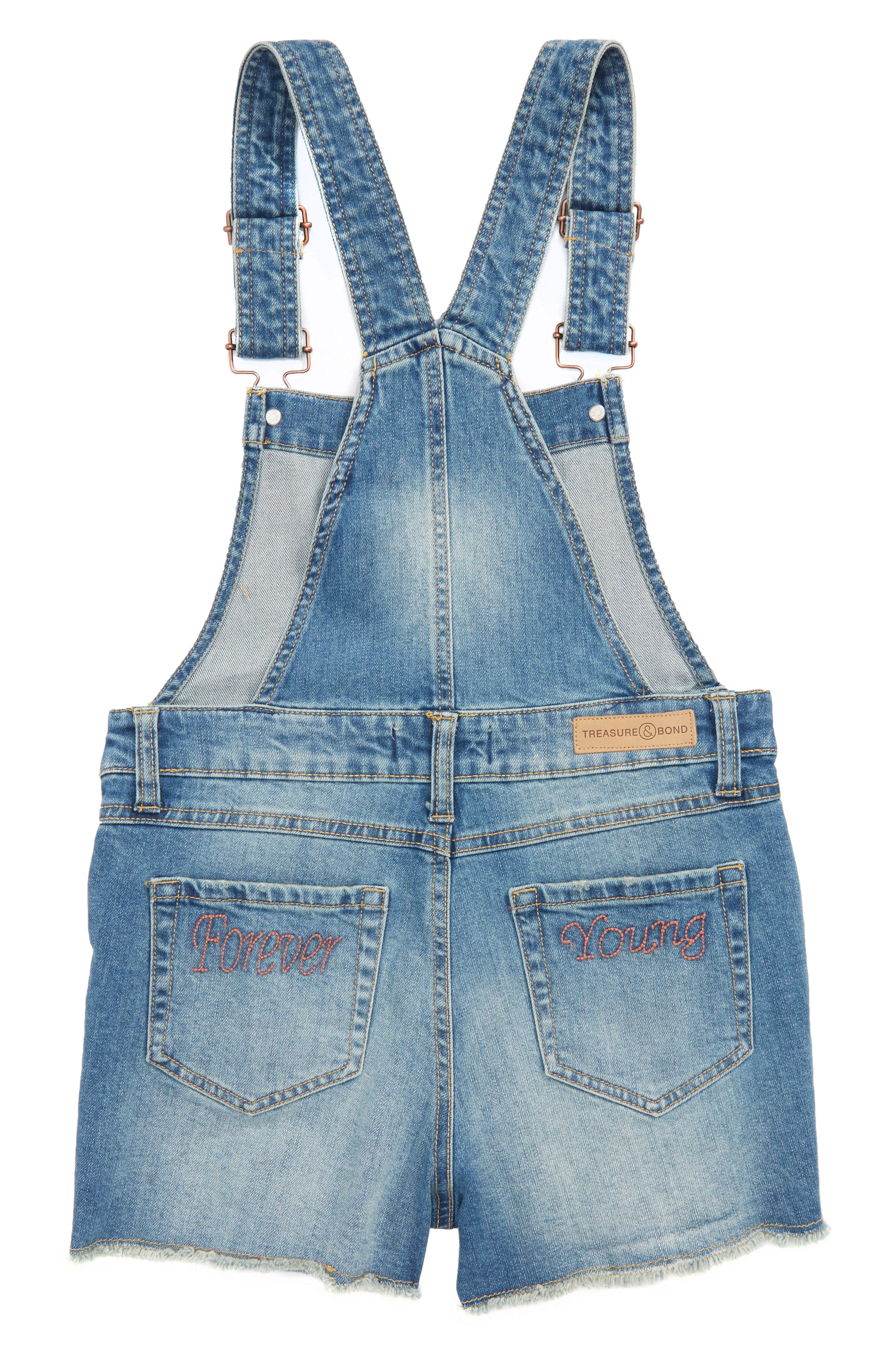 Distressed Denim Overall Shorts,                             Alternate thumbnail 2, color,                             420