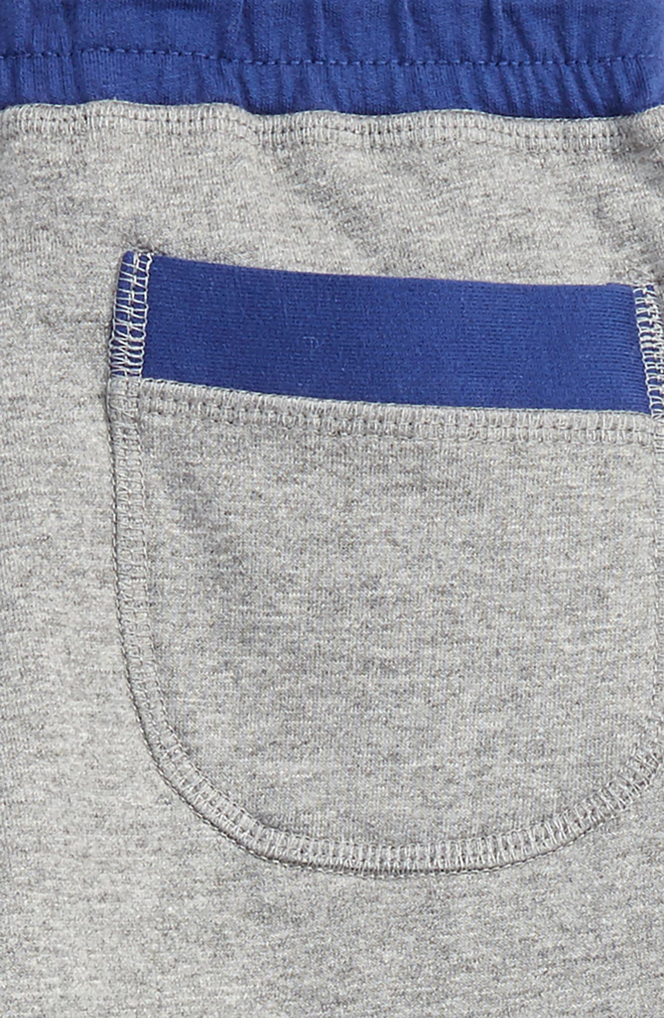 Shaggy Jogger Pants,                             Alternate thumbnail 3, color,                             062