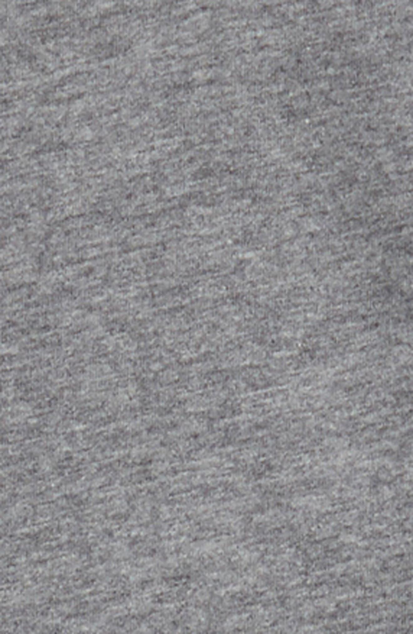 Plush Lined Zip Hoodie,                             Alternate thumbnail 2, color,                             030
