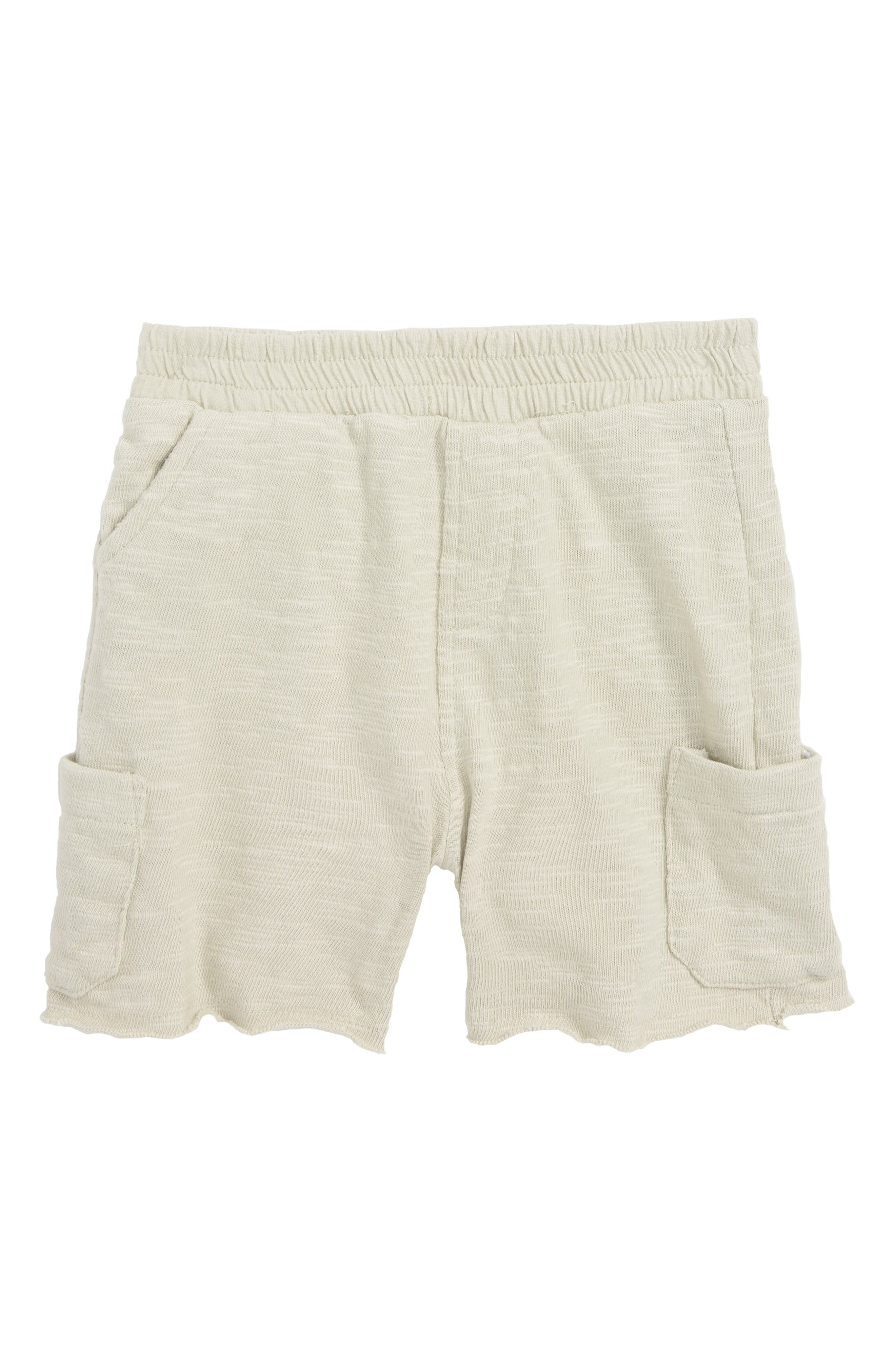 Asher Knit Cargo Shorts,                         Main,                         color, 020