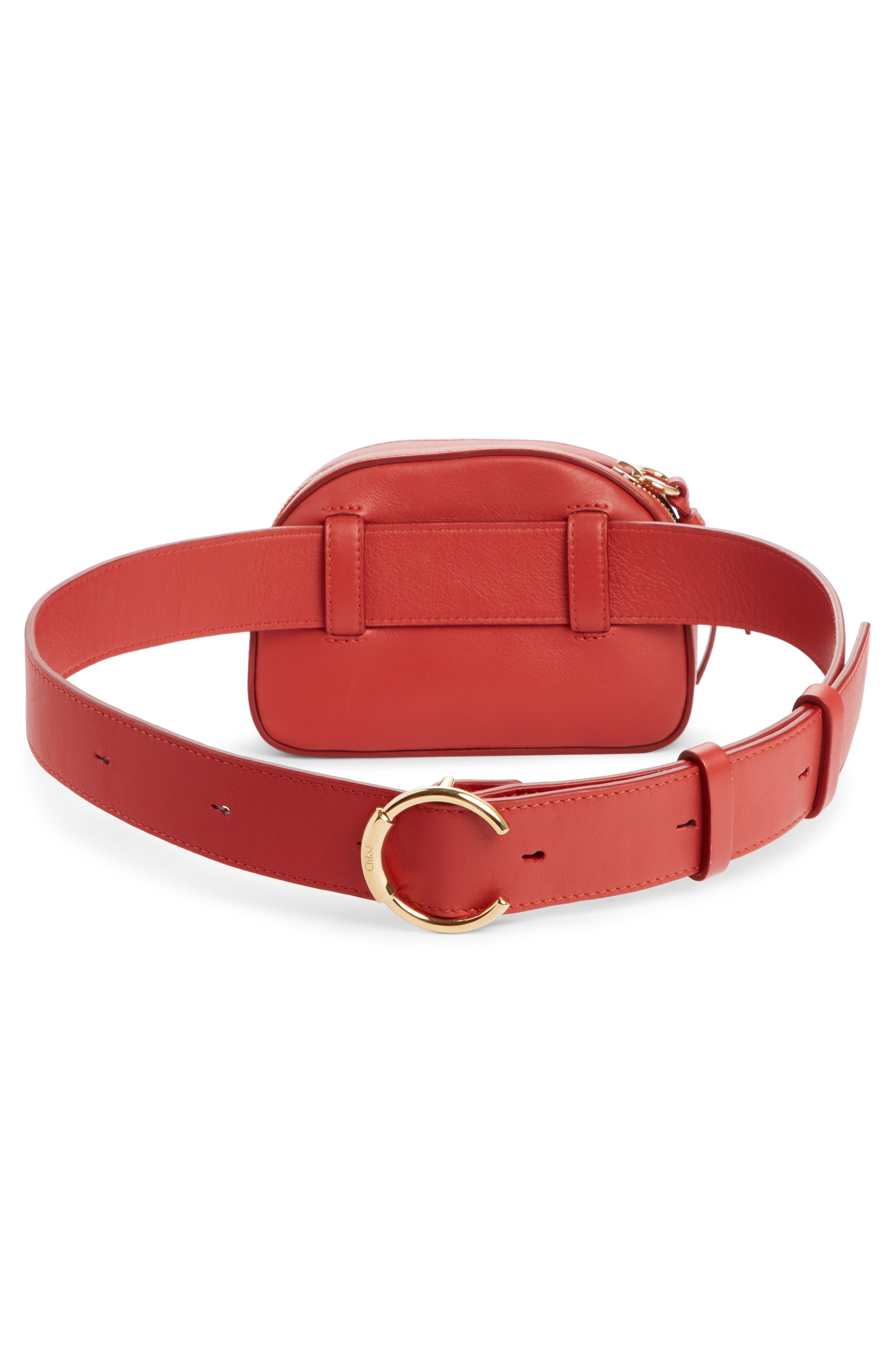 Embroidered Horse Leather Belt Bag,                             Alternate thumbnail 3, color,                             EARTHY RED