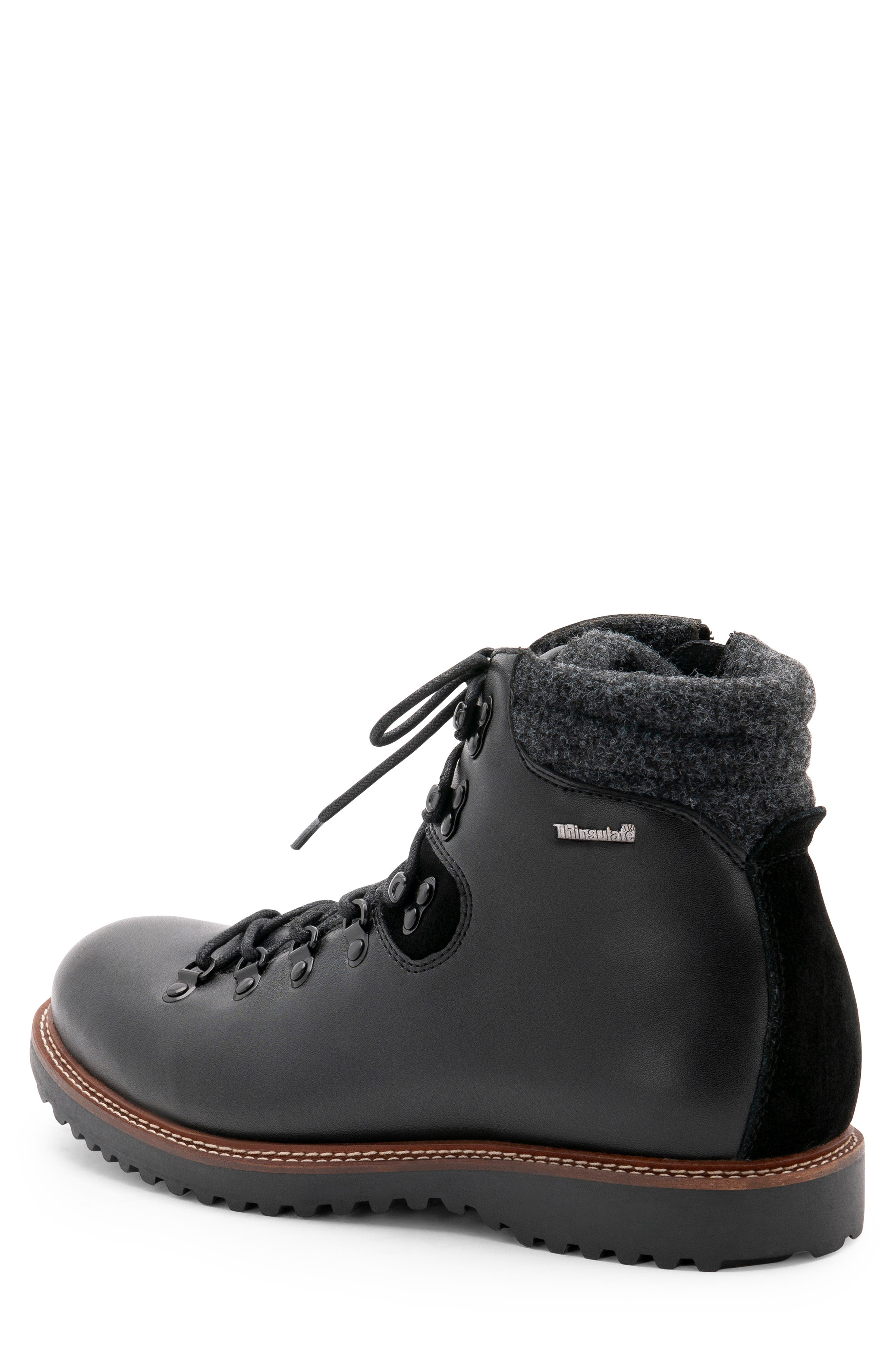 Morgan Waterproof Plain Toe Boot,                             Alternate thumbnail 2, color,                             BLACK LEATHER