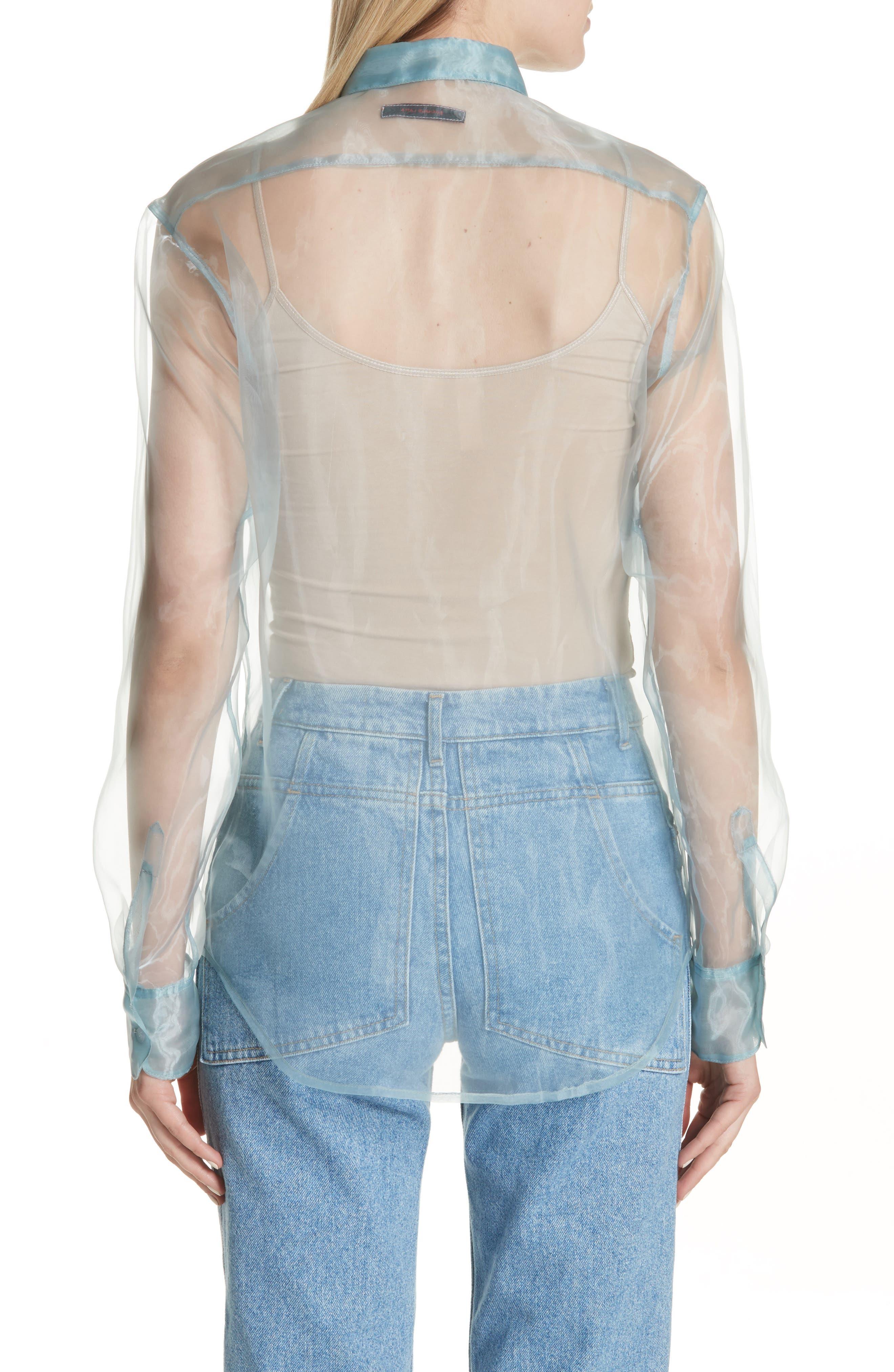 Iridescent Sheer Organza Shirt,                             Alternate thumbnail 2, color,                             400