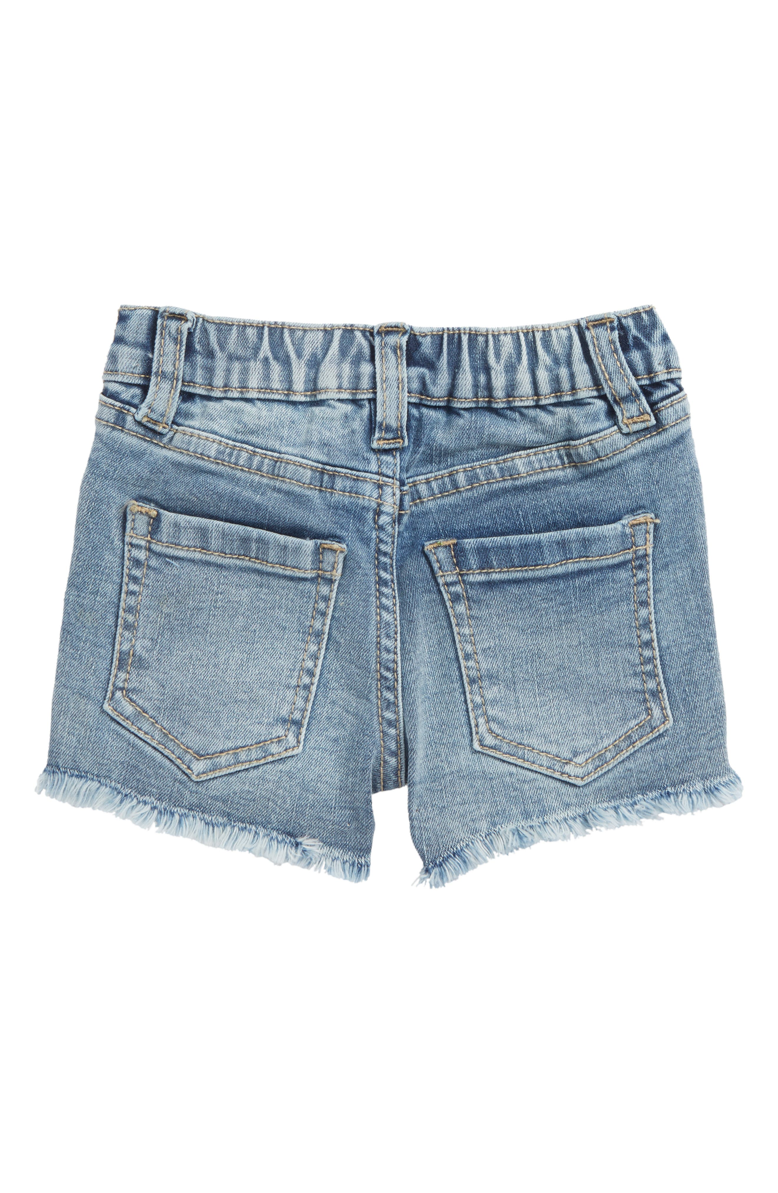 Embroidered Frayed Hem Denim Shorts,                             Alternate thumbnail 2, color,                             416