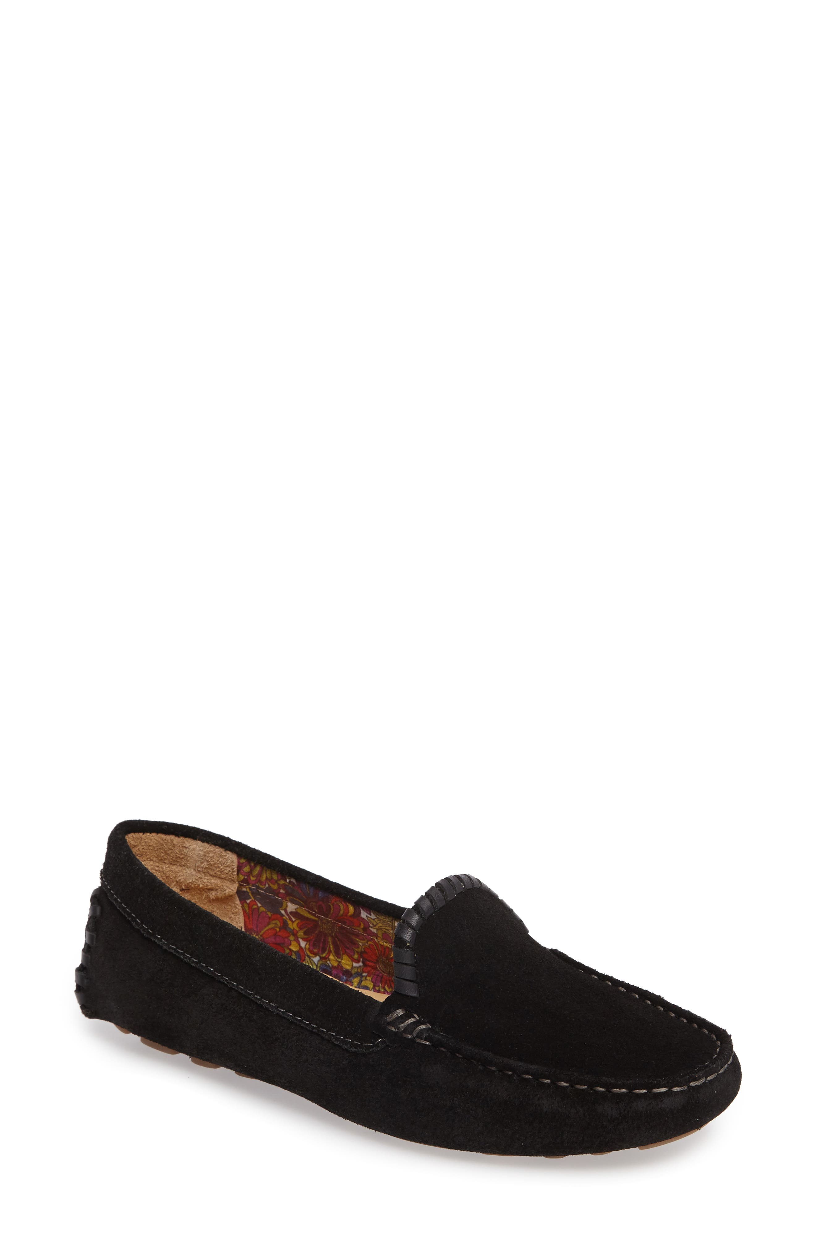 Taylor Driving Loafer,                             Main thumbnail 1, color,                             BLACK SUEDE