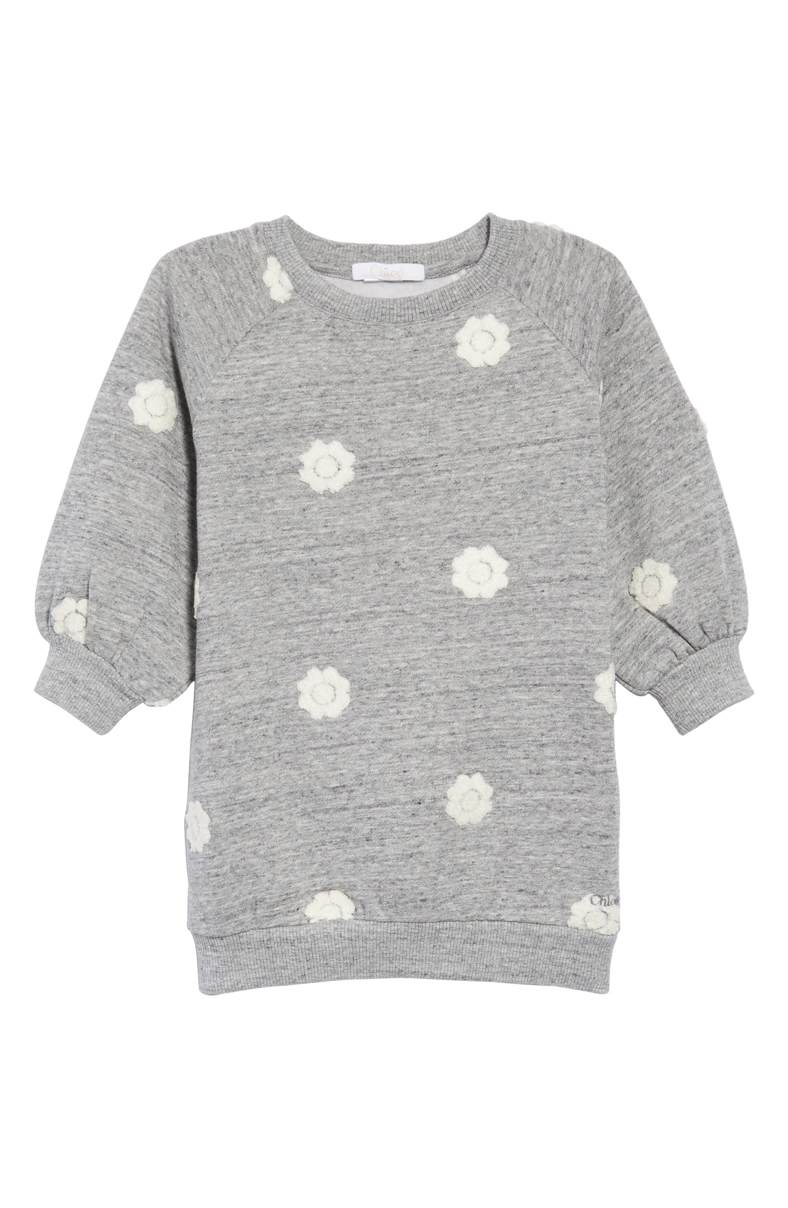 Floral Embroidered Sweatshirt Dress,                             Main thumbnail 1, color,                             GRIS CHINE