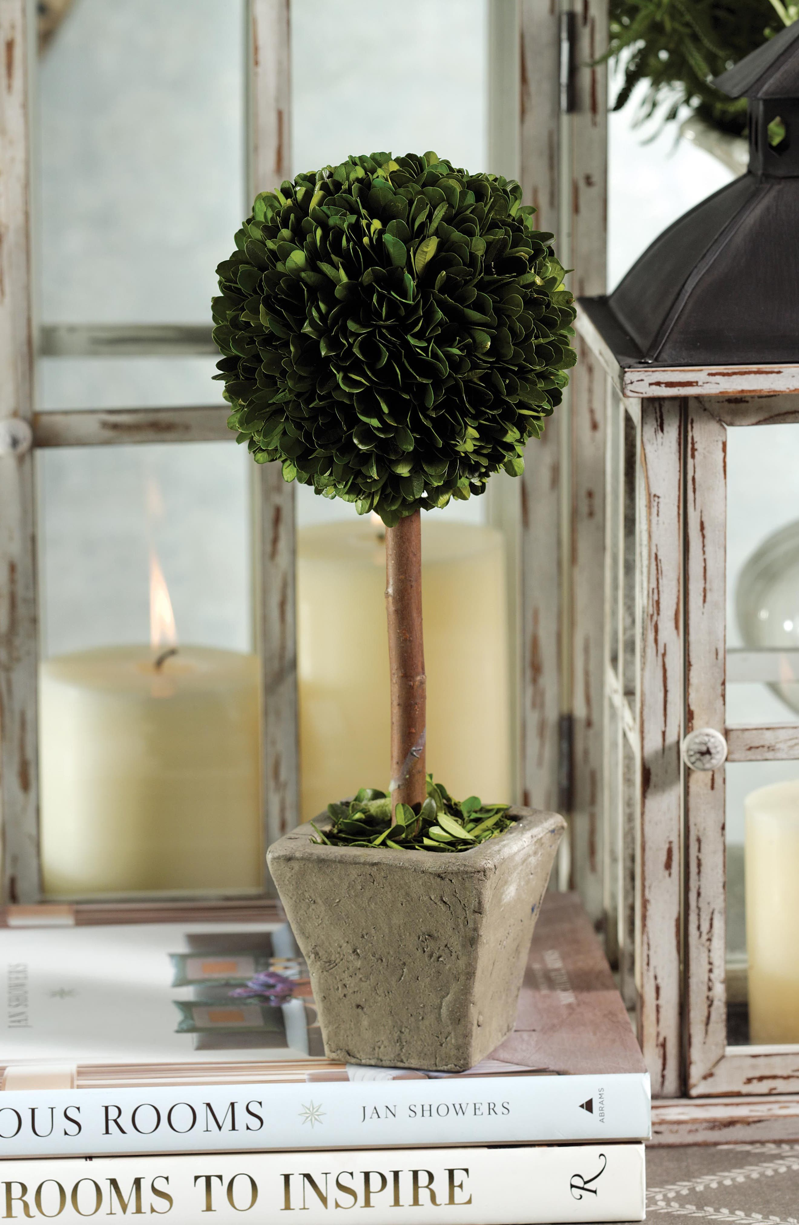Boxwood Topiary Decoration,                             Alternate thumbnail 2, color,                             300