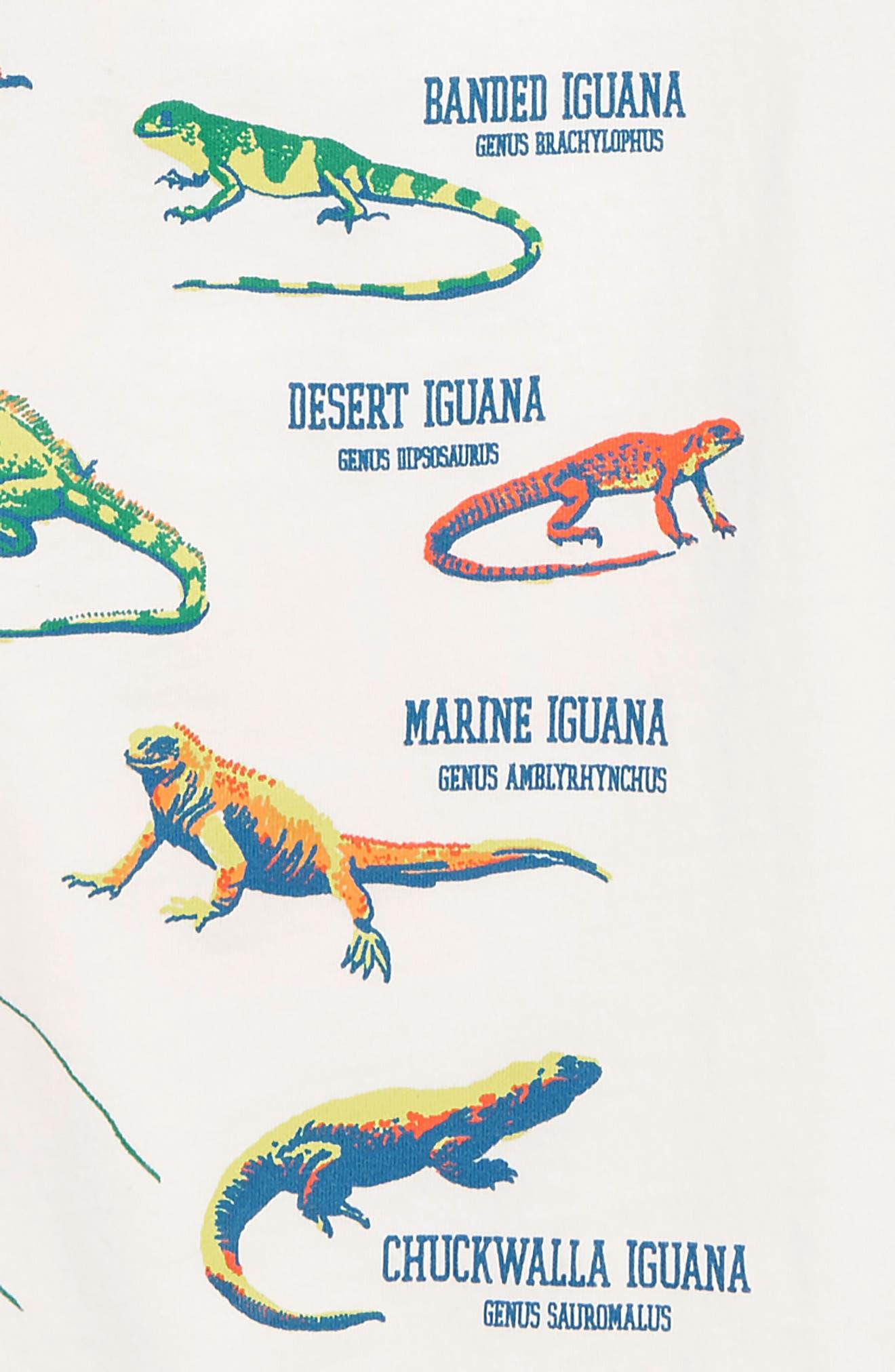 PEEK AREN'T YOU CURIOUS,                             Iguana Chill T-Shirt,                             Alternate thumbnail 3, color,                             IVORY
