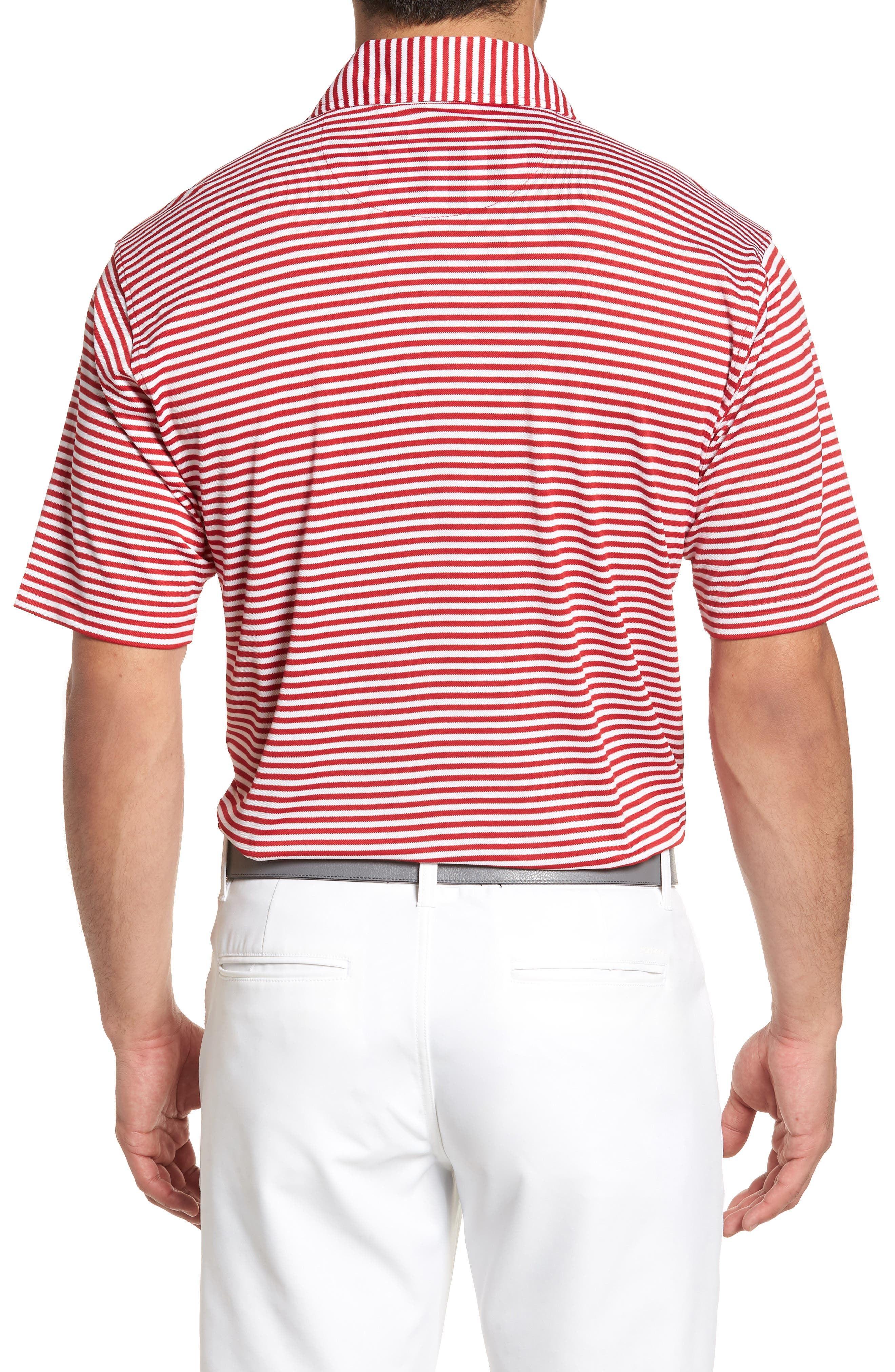 XH2O Feed Stripe Stretch Golf Polo,                             Alternate thumbnail 22, color,