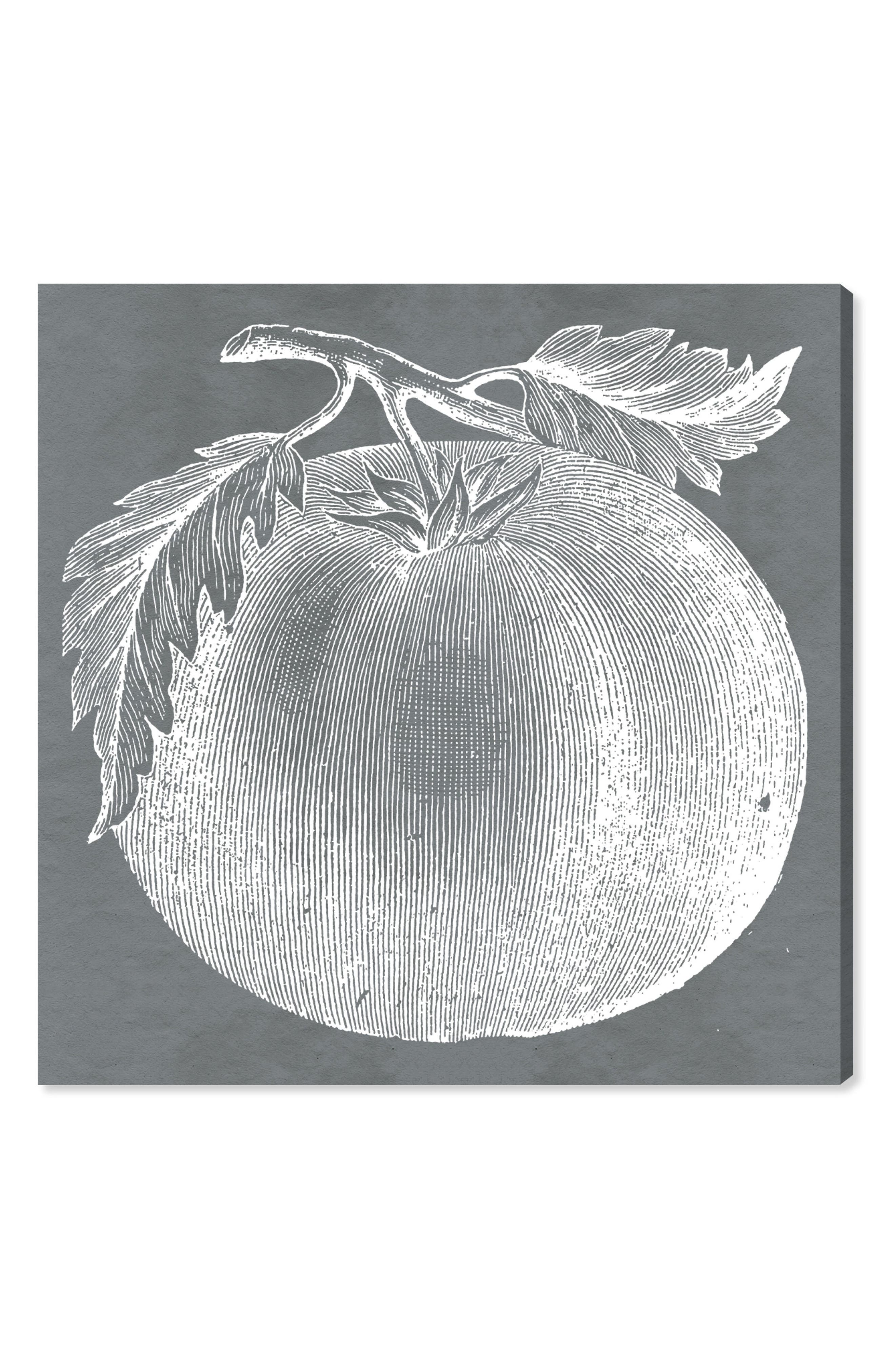 Tomato Canvas Wall Art,                         Main,                         color, GREY