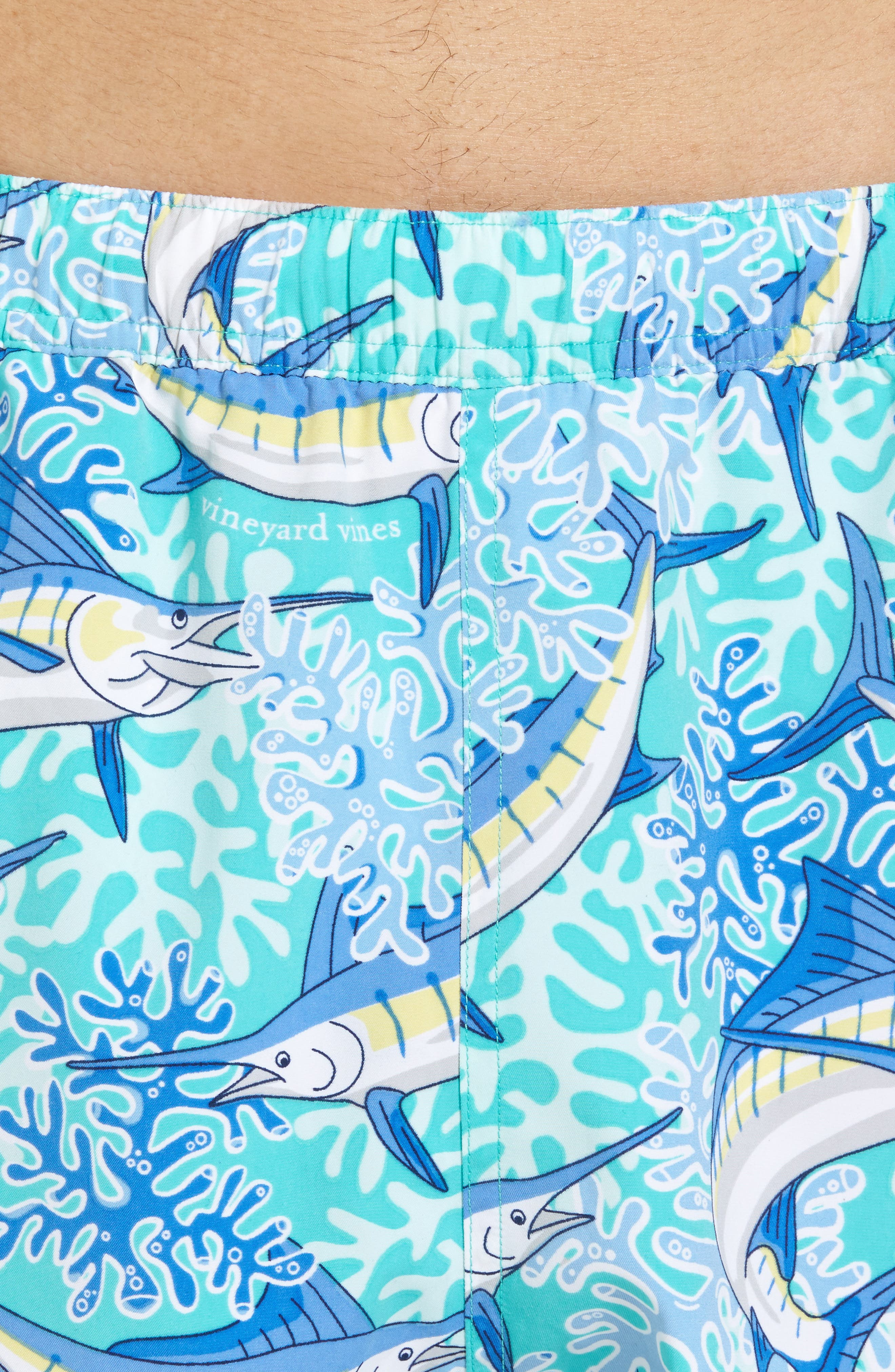 Chappy Swim Trunks,                             Alternate thumbnail 4, color,                             400