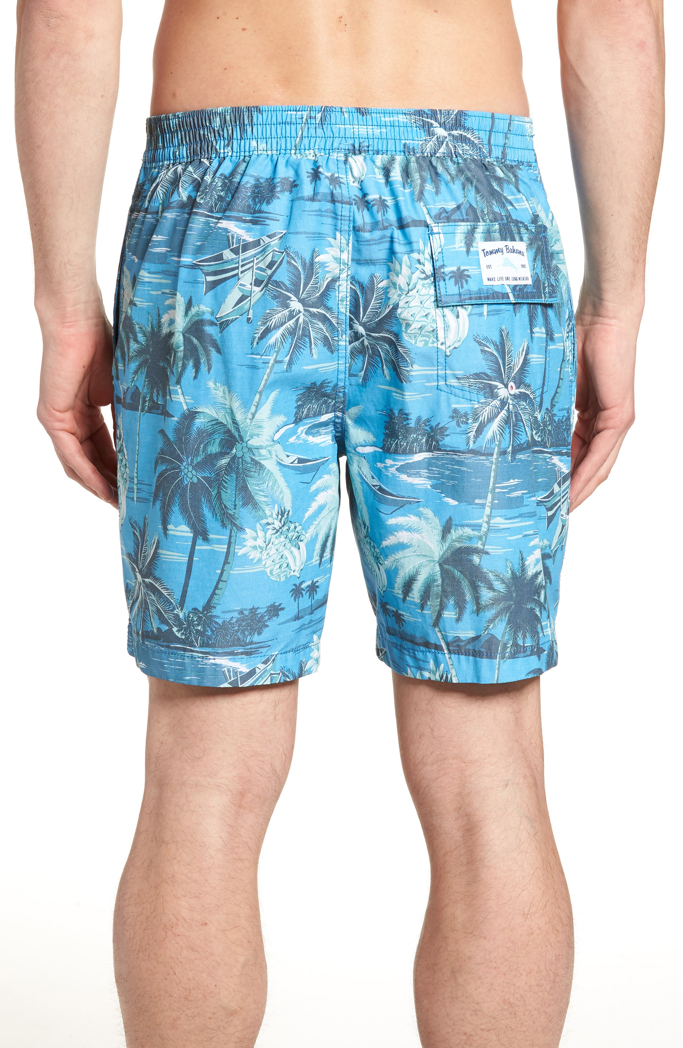 Baja Puerto Vallarta Palms Board Shorts,                             Alternate thumbnail 2, color,