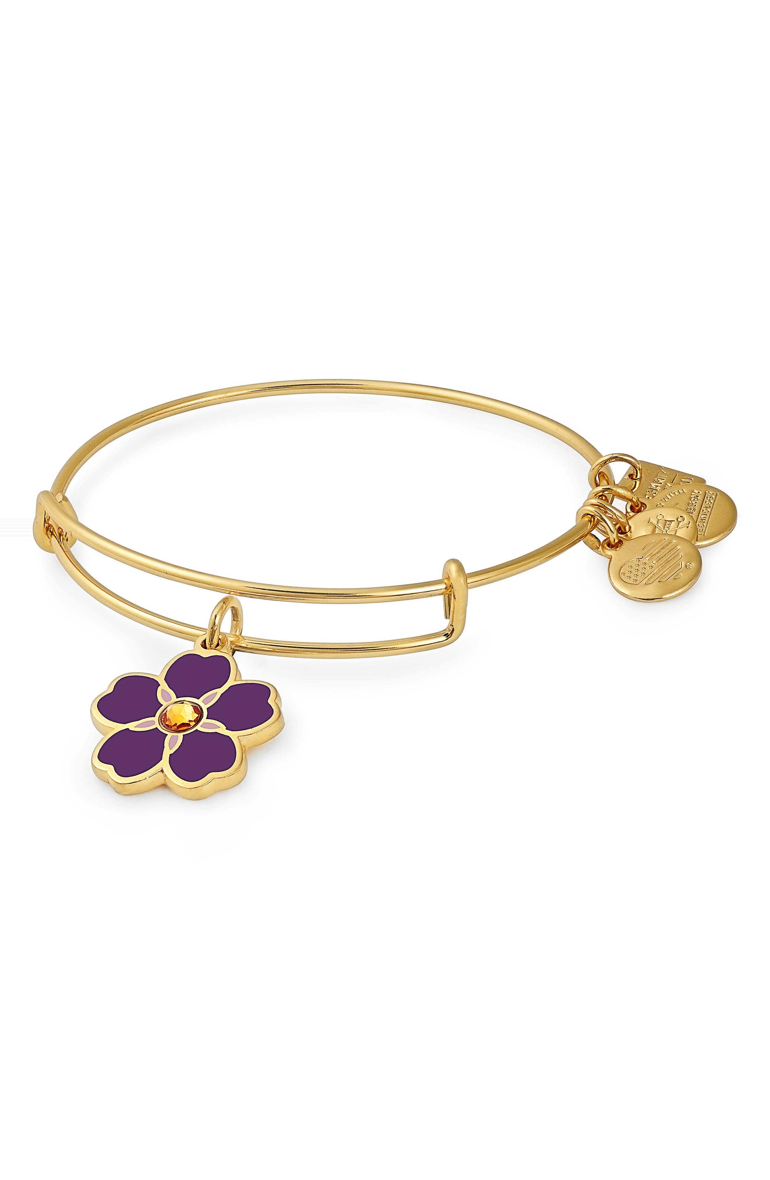 Charity by Design Forget Me Not Charm Bracelet,                             Main thumbnail 1, color,                             GOLD