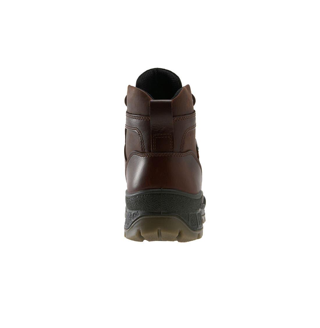 ECCO,                             Track II High Waterproof Boot,                             Alternate thumbnail 11, color,                             Bison