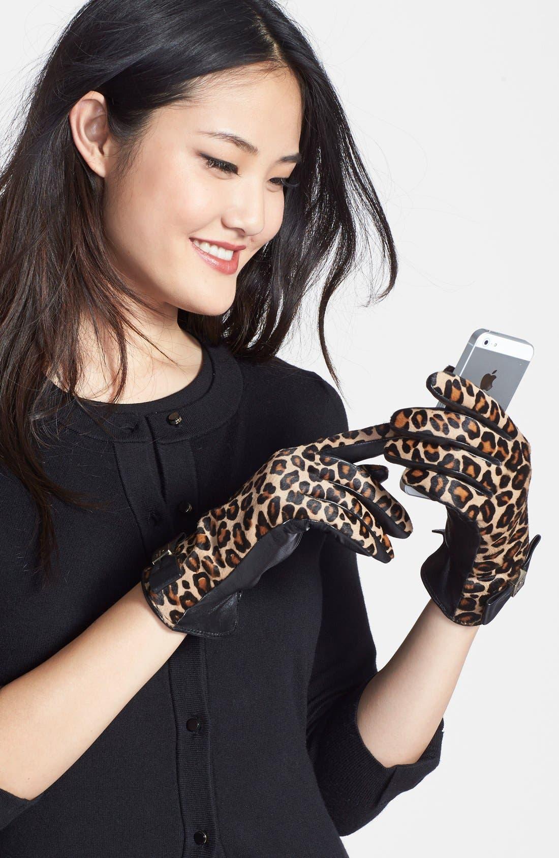 cheetah print calf hair & leather gloves, Main, color, 250