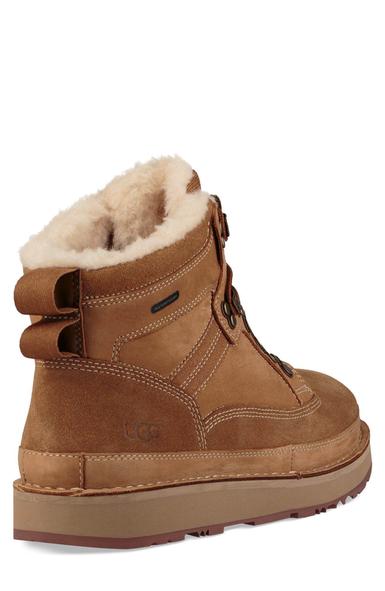 Avalanche Hiker Waterproof Boot,                             Alternate thumbnail 2, color,                             CHESTNUT