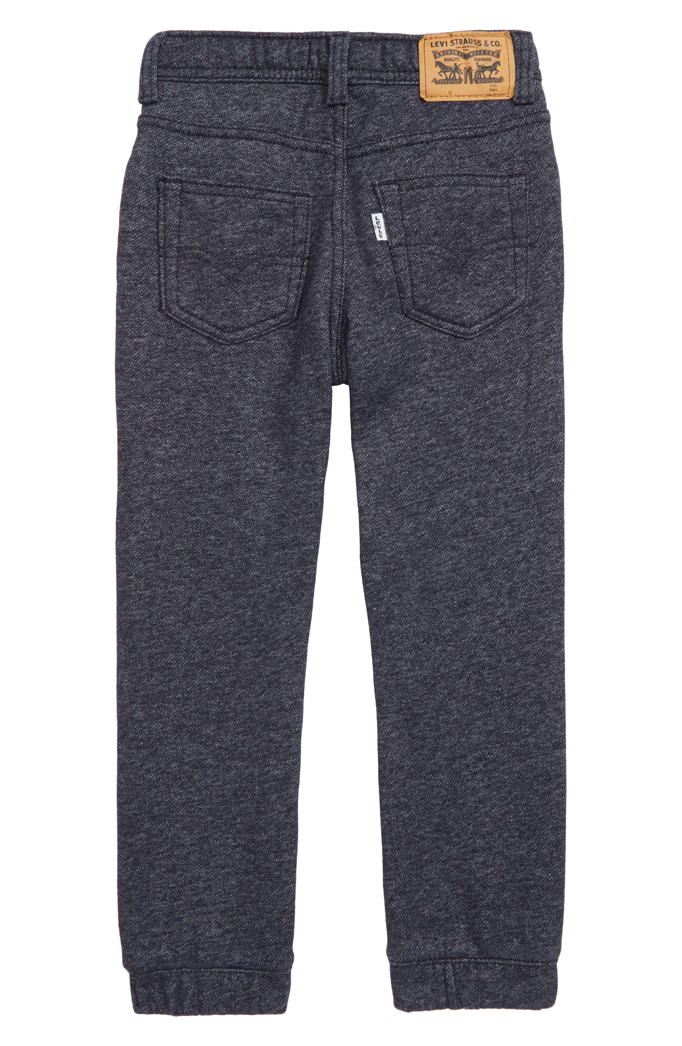 Knit Jogger Pants,                             Alternate thumbnail 2, color,                             410