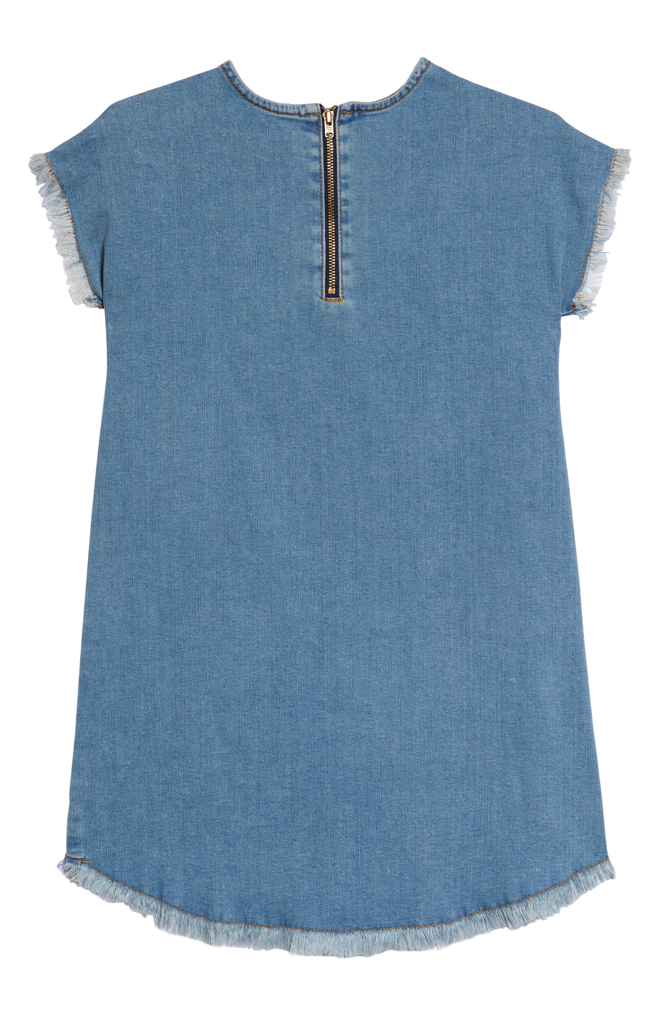 Embroidered Denim Shift Dress,                             Alternate thumbnail 2, color,                             420