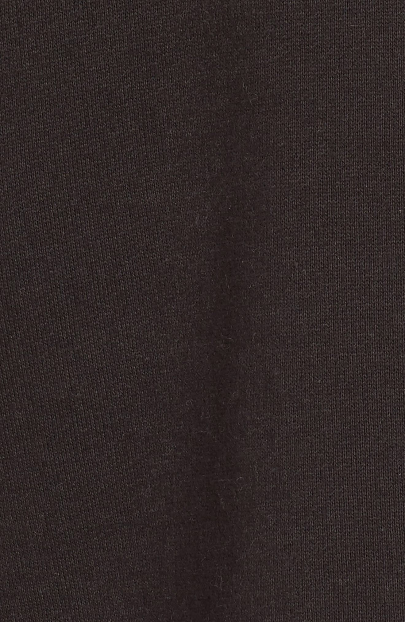 Fleece Lined Hoodie,                             Alternate thumbnail 5, color,                             024