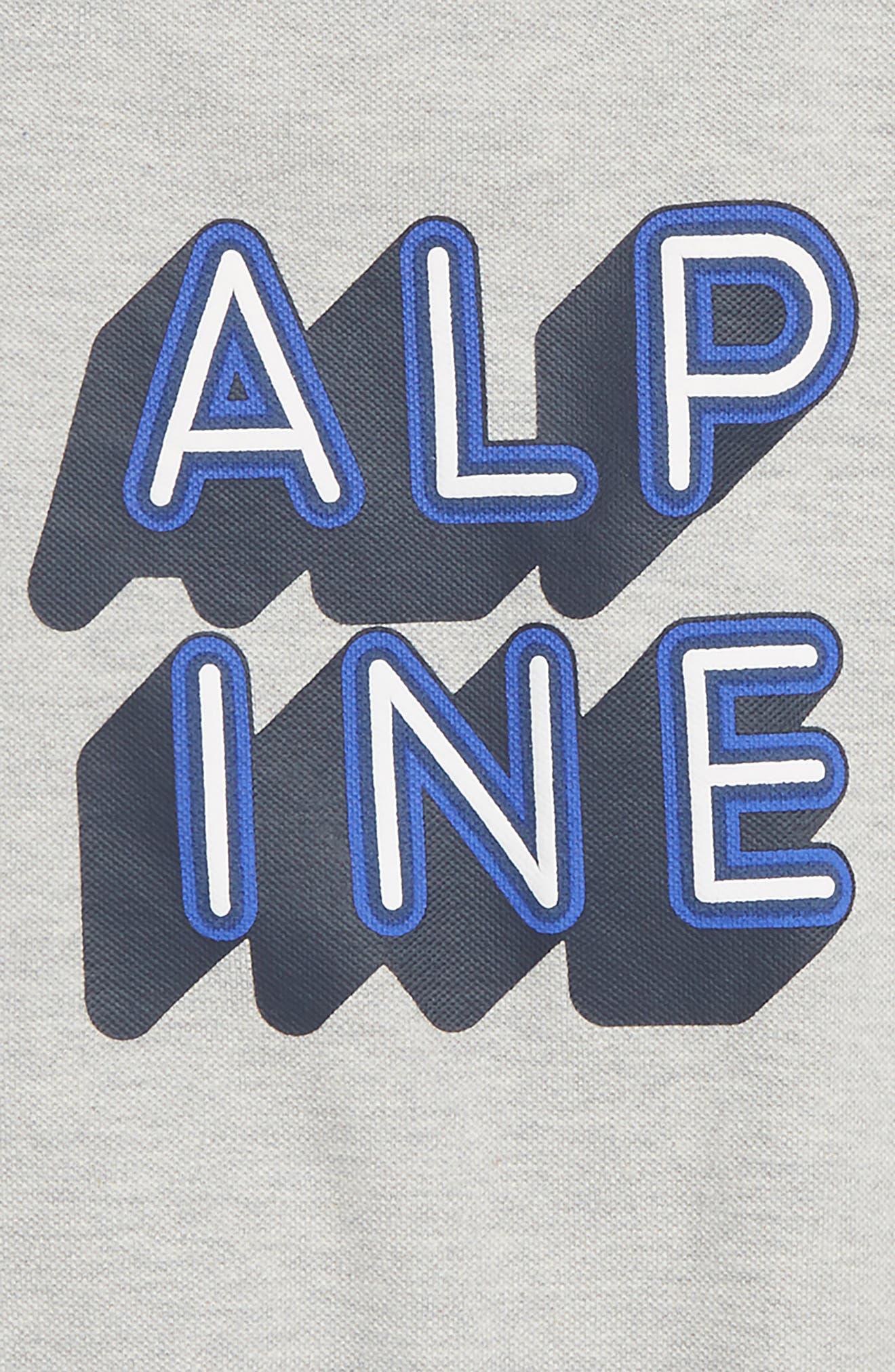 Alpine T-Shirt,                             Alternate thumbnail 3, color,                             GREY