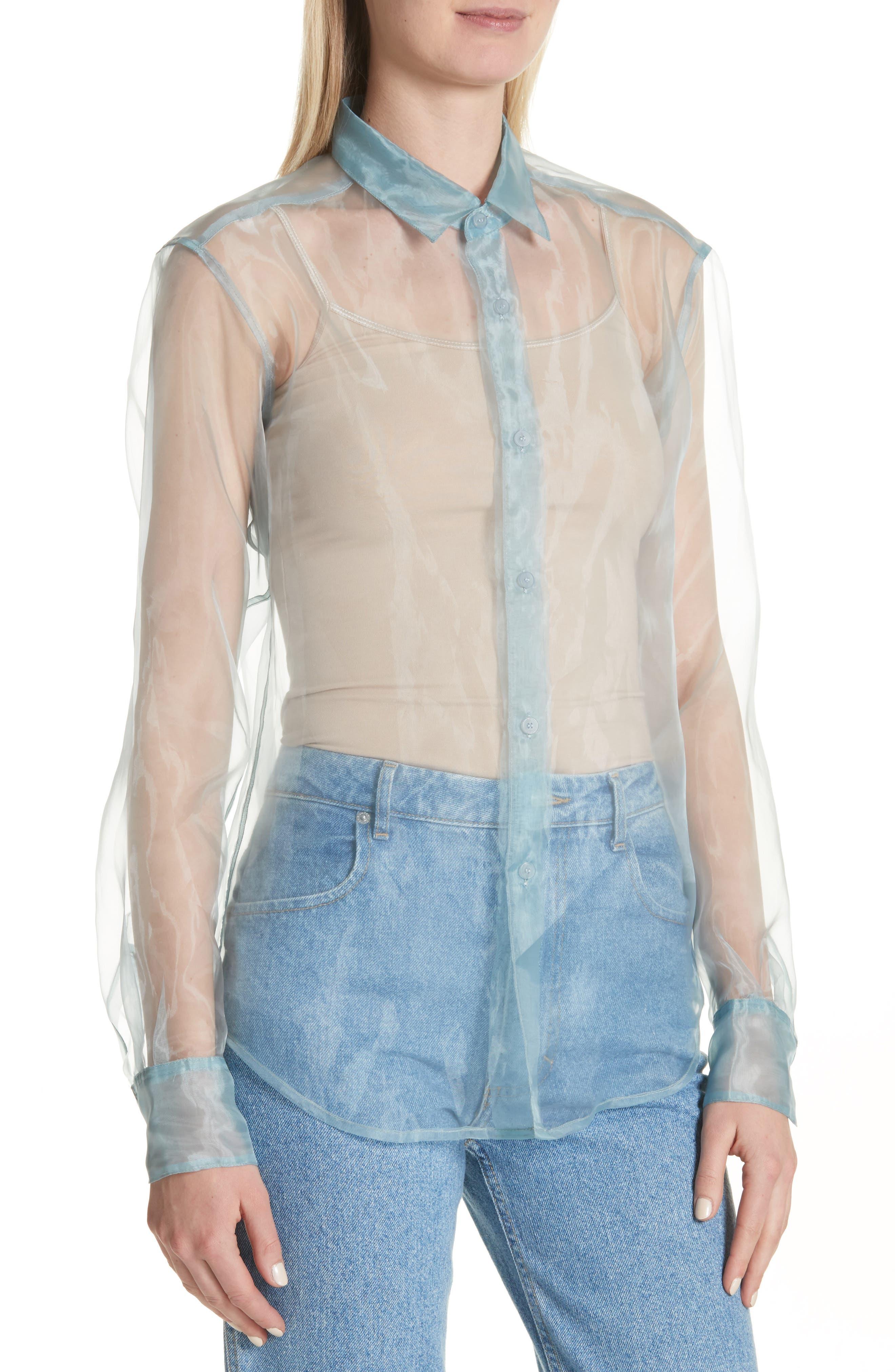 Iridescent Sheer Organza Shirt,                             Alternate thumbnail 4, color,                             400