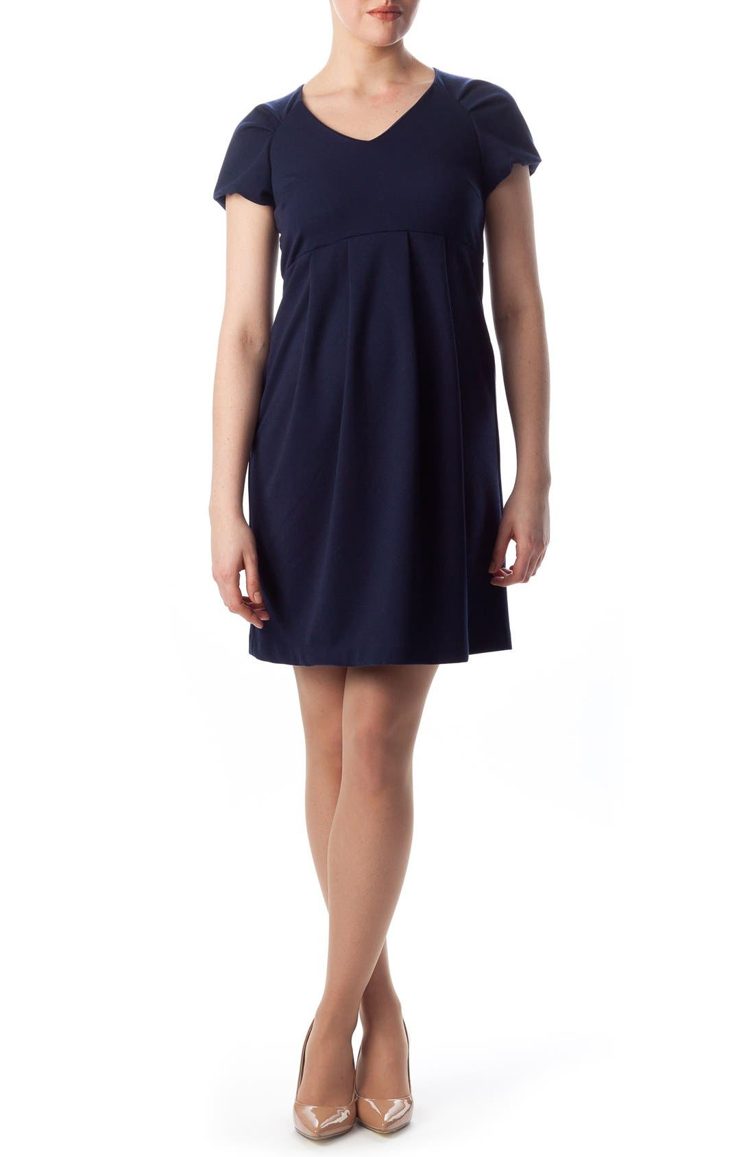 Central Park Maternity Dress,                             Main thumbnail 1, color,                             DRESS BLUES