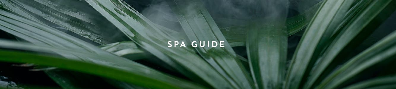 Spa Nordstrom: view services.
