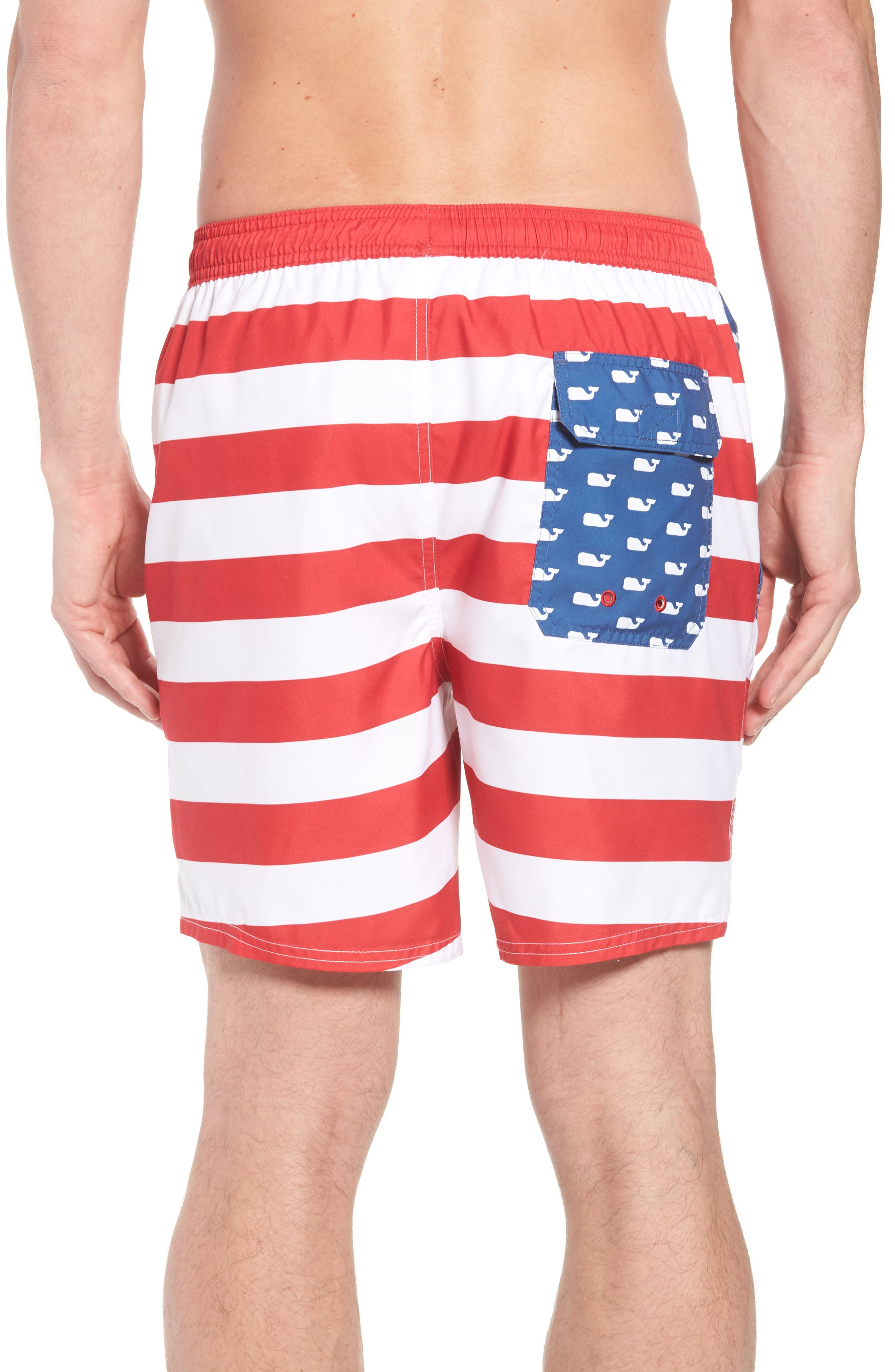 Chappy USA Flag Swim Trunks,                             Alternate thumbnail 2, color,                             461