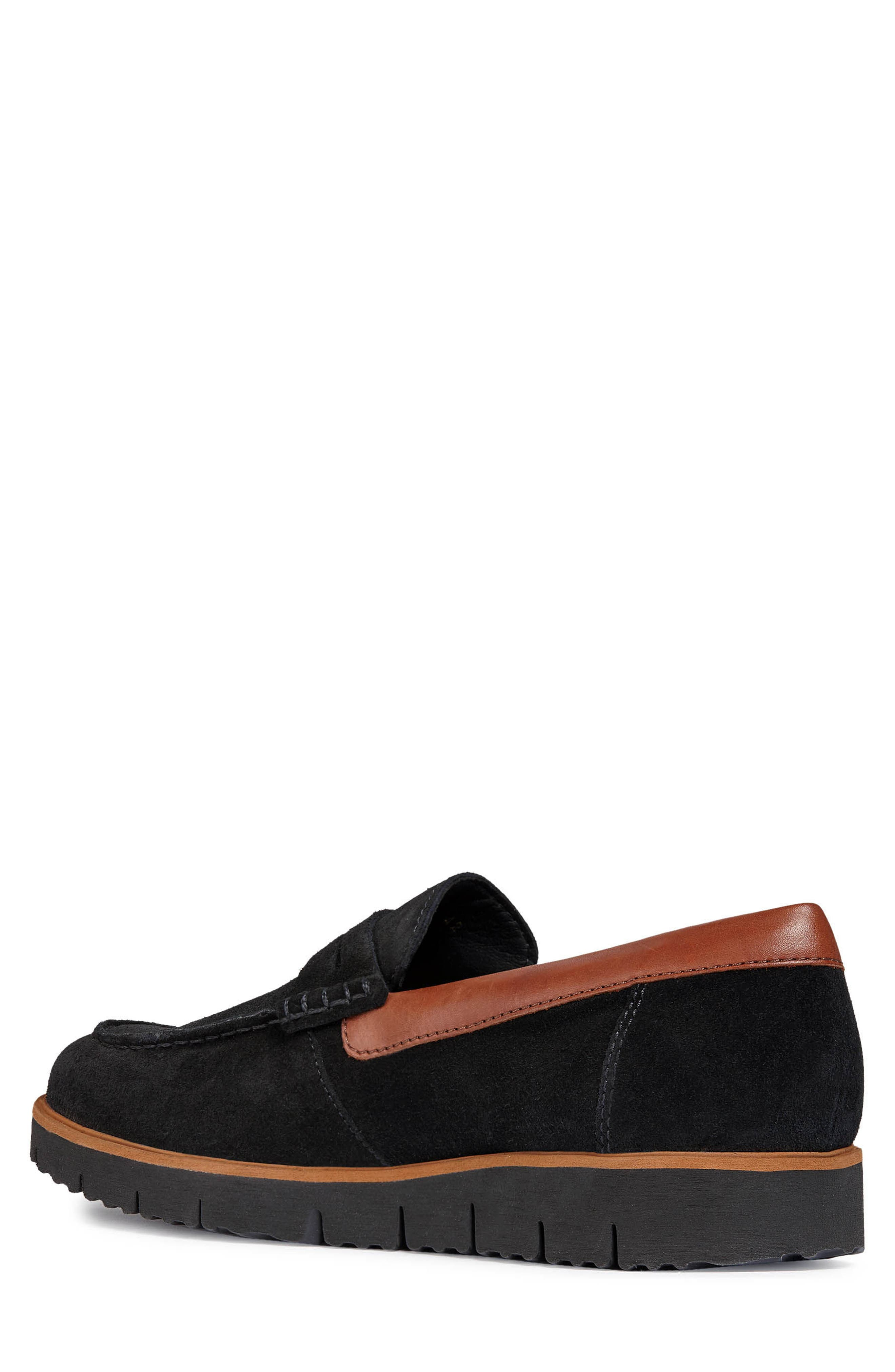 New Pluges 6 Penny Loafer,                             Alternate thumbnail 2, color,                             BLACK/ BROWN LEATHER