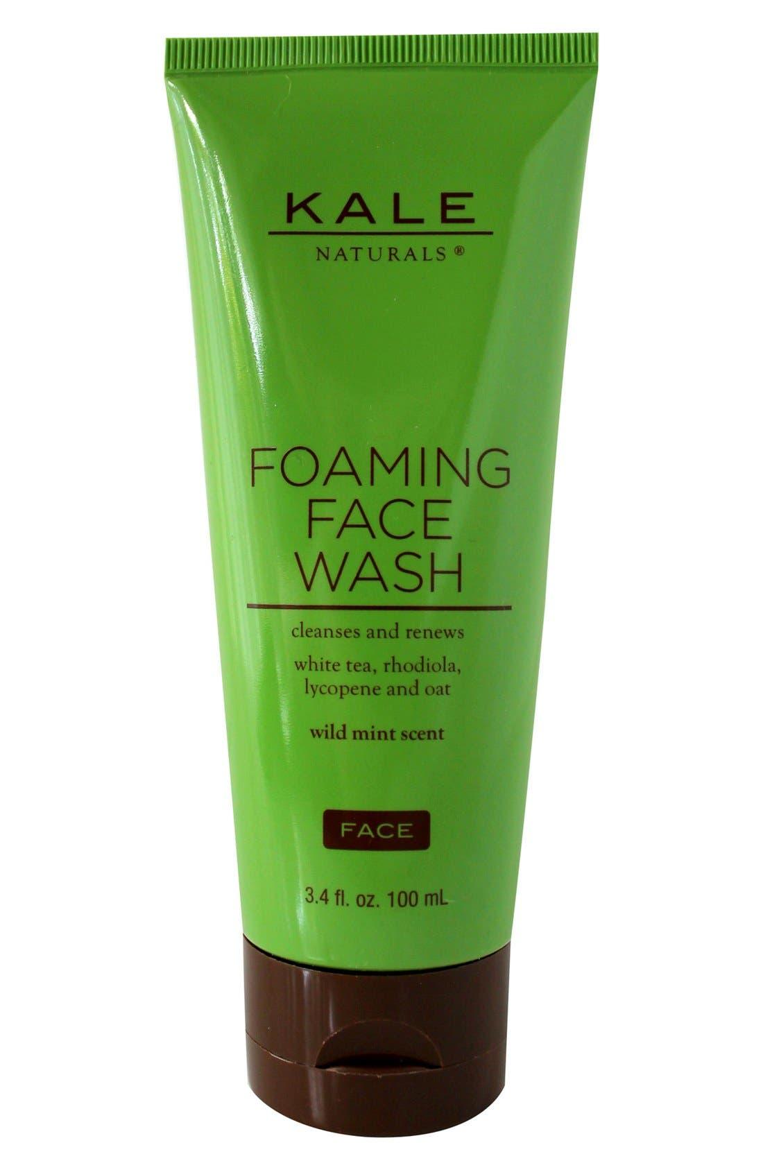 Foaming Face Wash, Main, color, 000