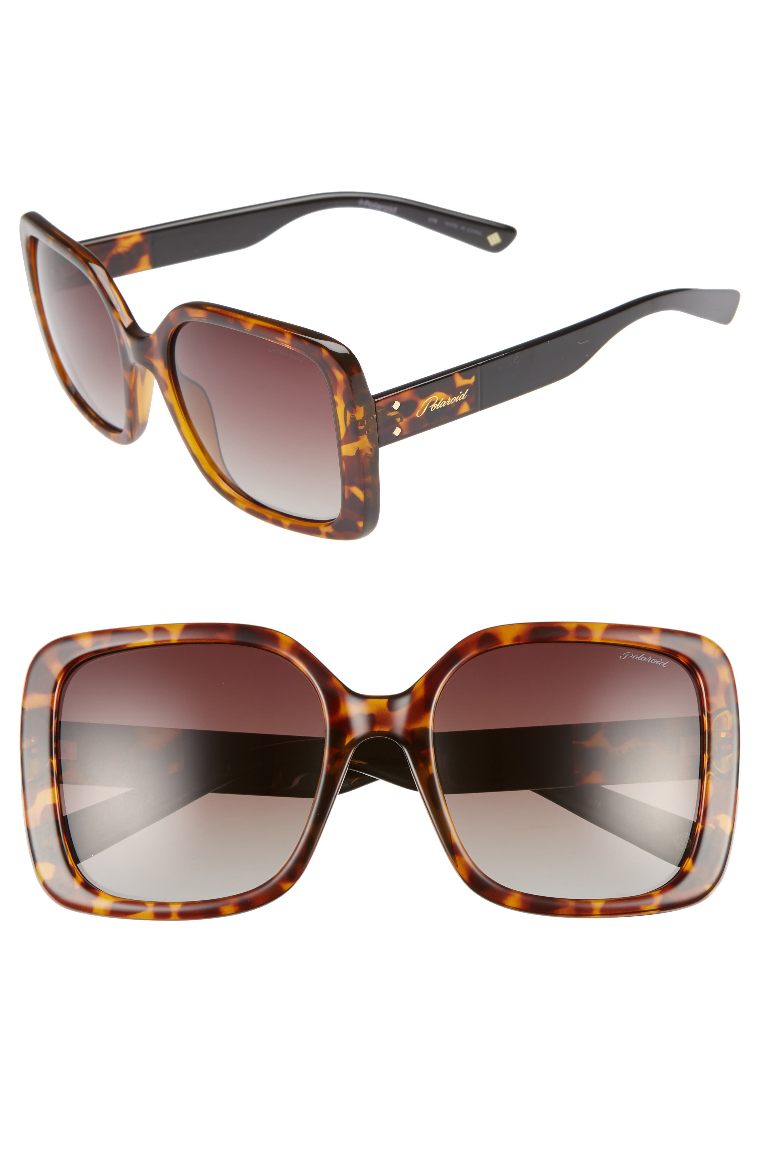 Polaroid 55Mm Polarized Square Sunglasses - Dark Havana